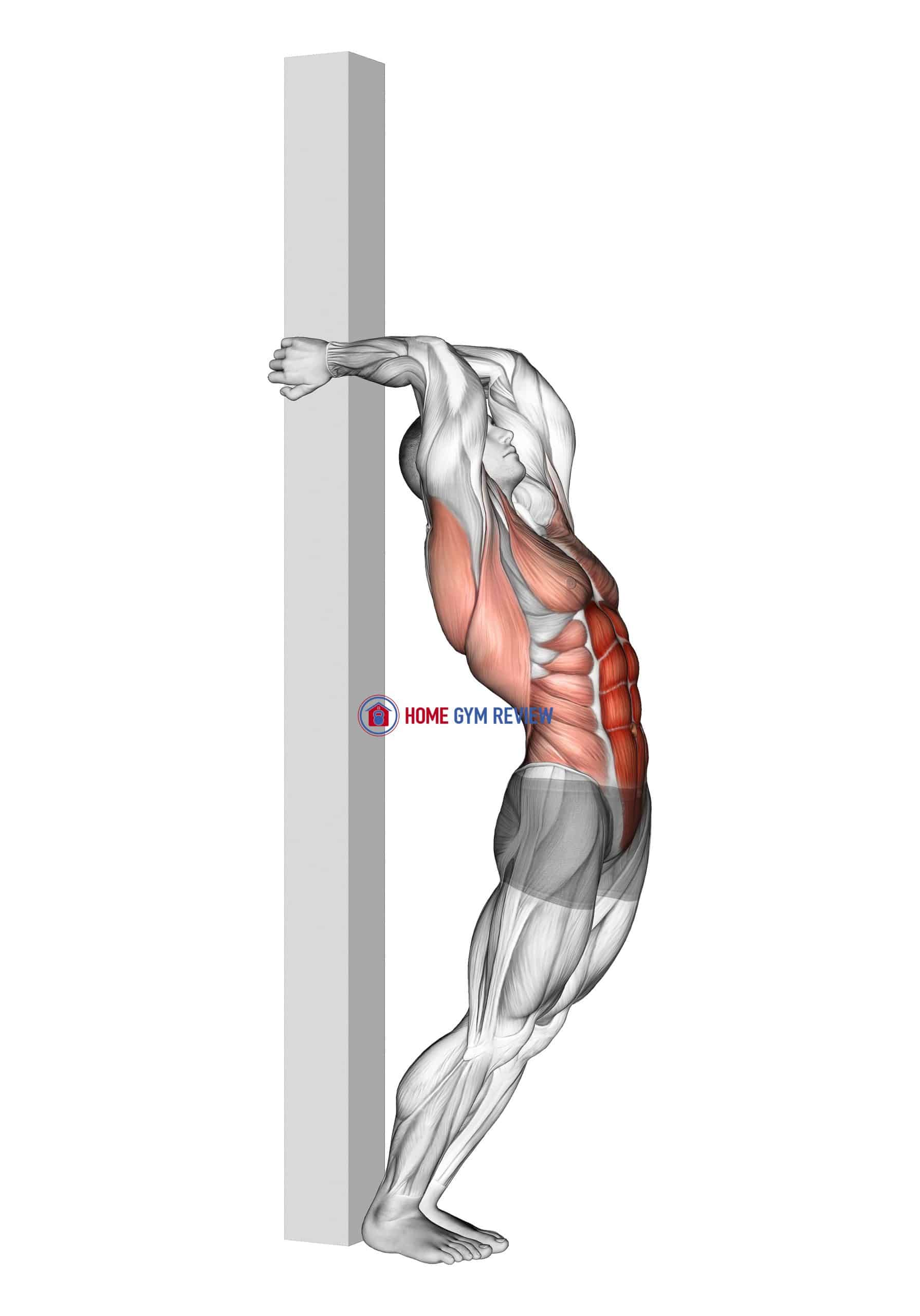 Hip Extension Supported From Back