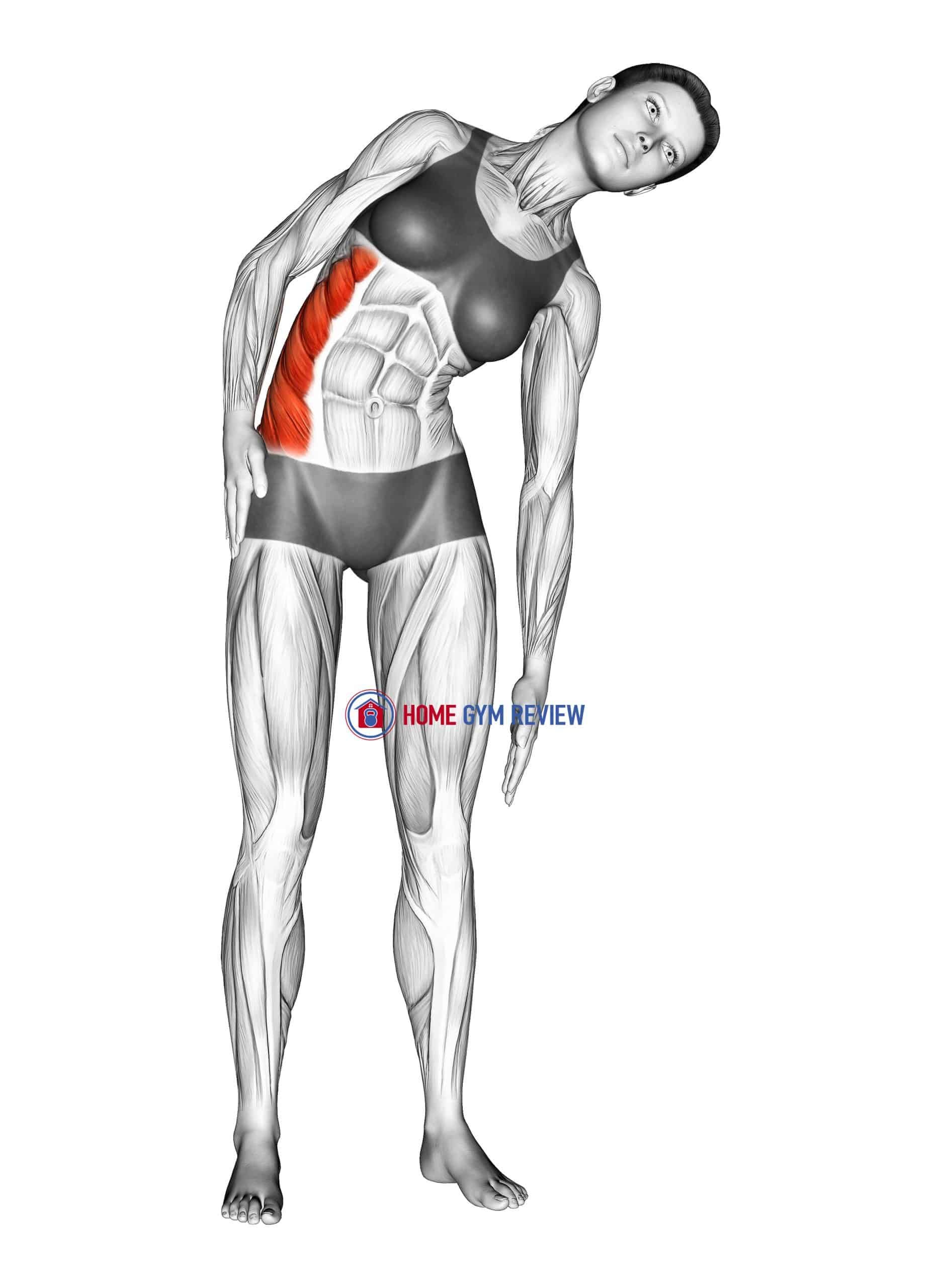 Standing Lateral Side Stretch
