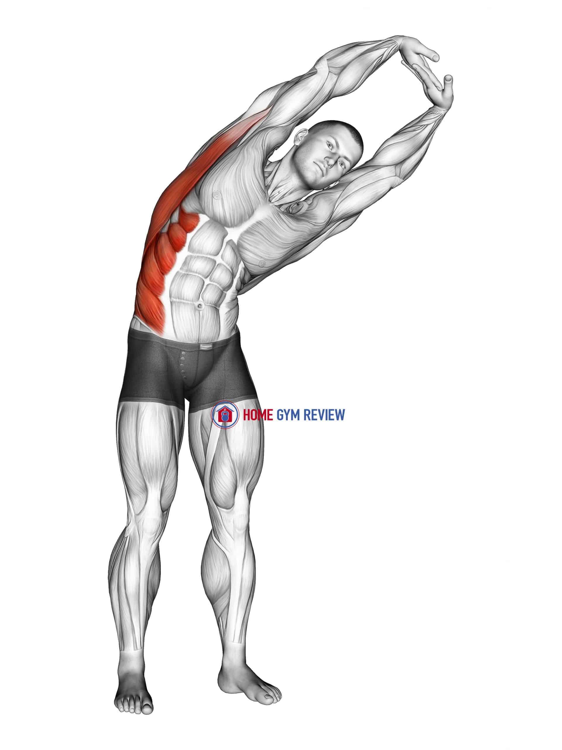 Standing Side Stretch