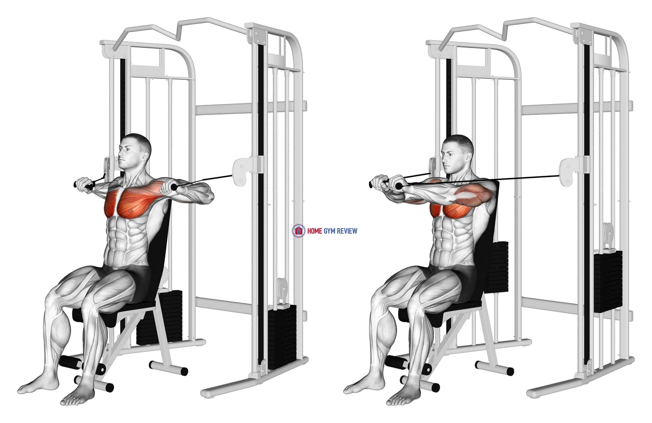Cable Seated Chest Press