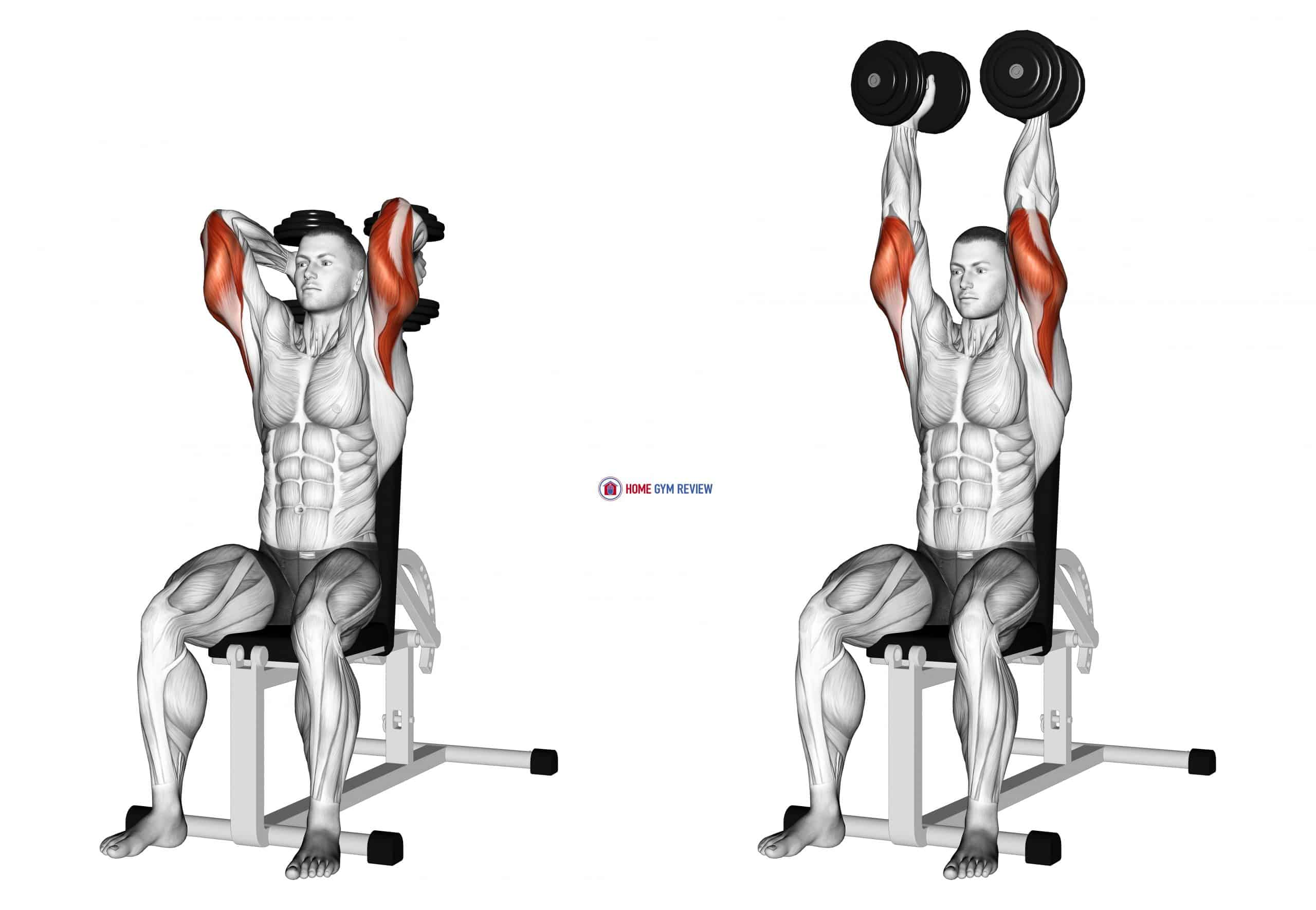 Dumbbells Seated Triceps Extension