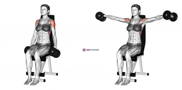 Dumbbell Seated Lateral Raise (female)