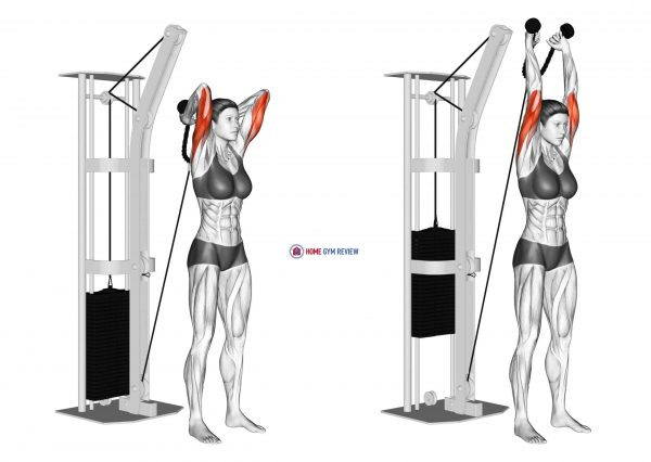 Cable Overhead Triceps Extension (rope attachment) (female)