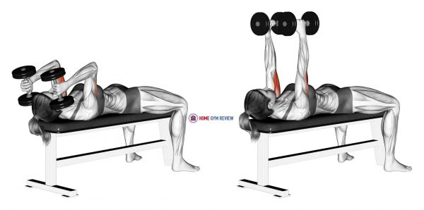 Dumbbell Lying Triceps Extension (female)