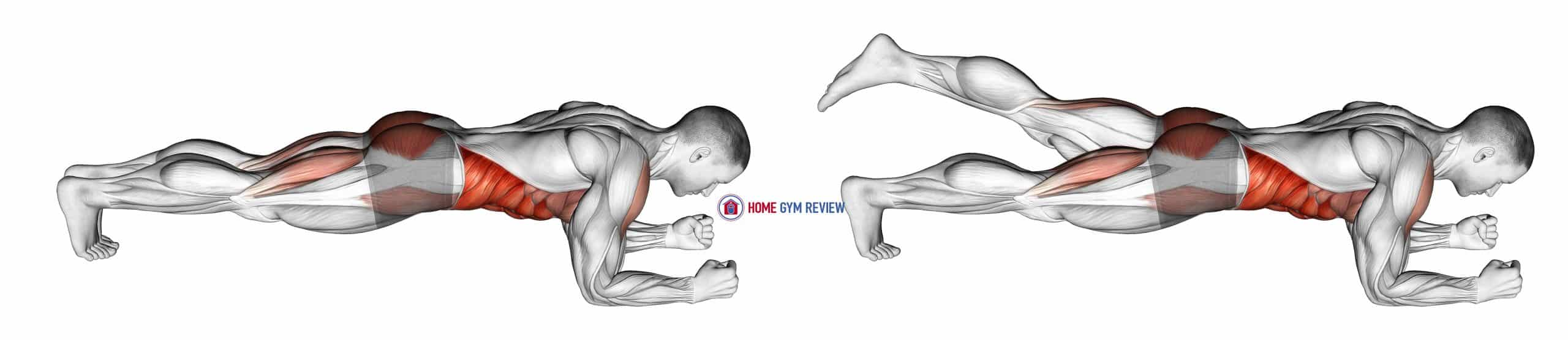 Front Plank with Leg Lift (male)