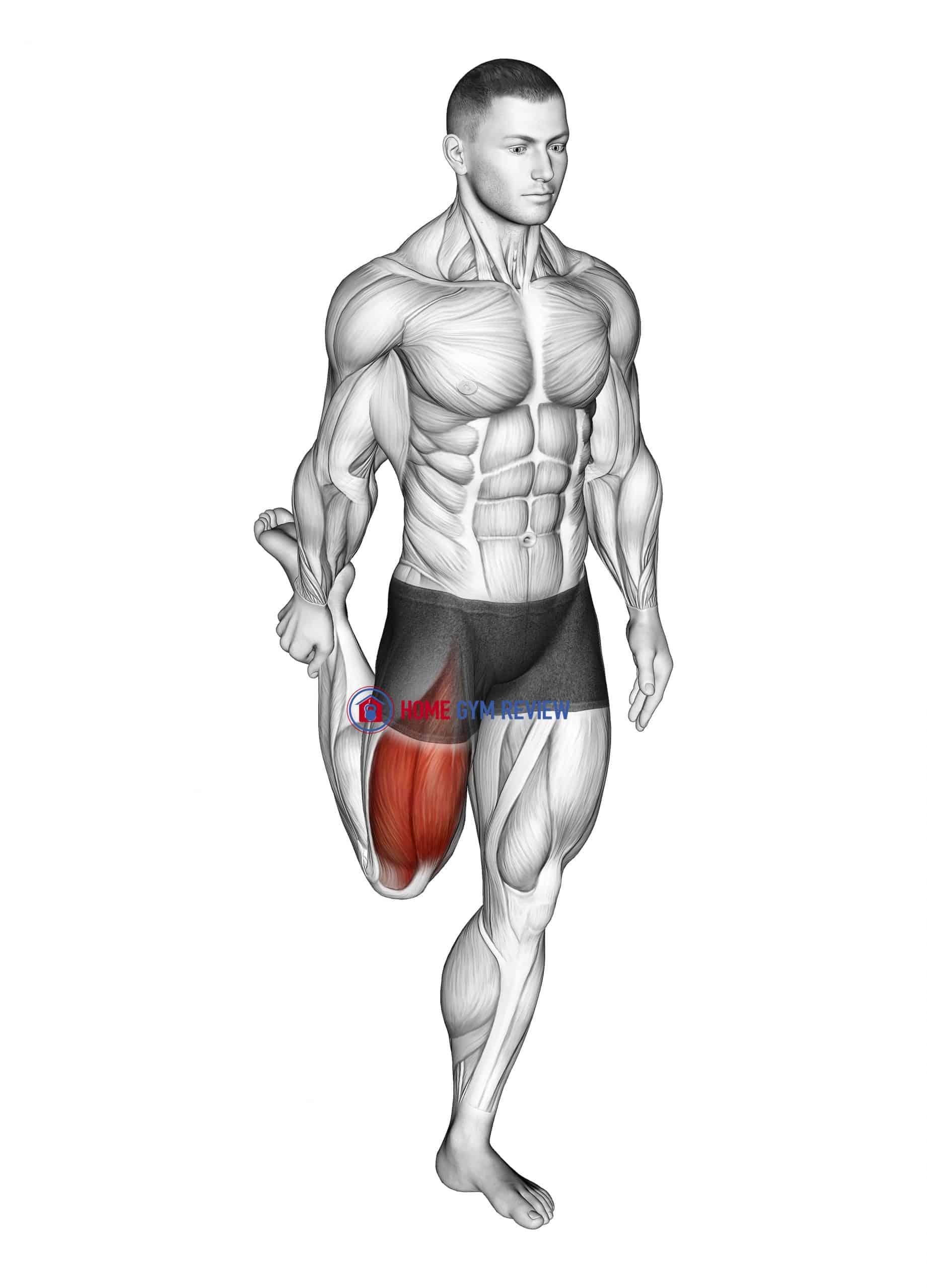 Standing Balance Quadriceps Stretch
