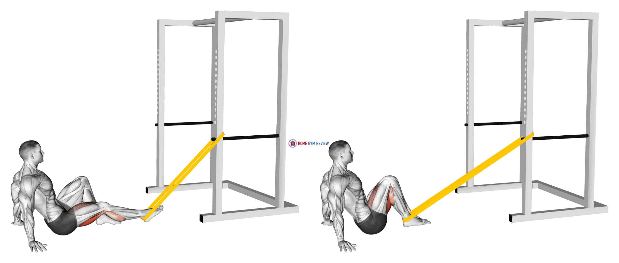Resistance Band Seated Single Leg Curl