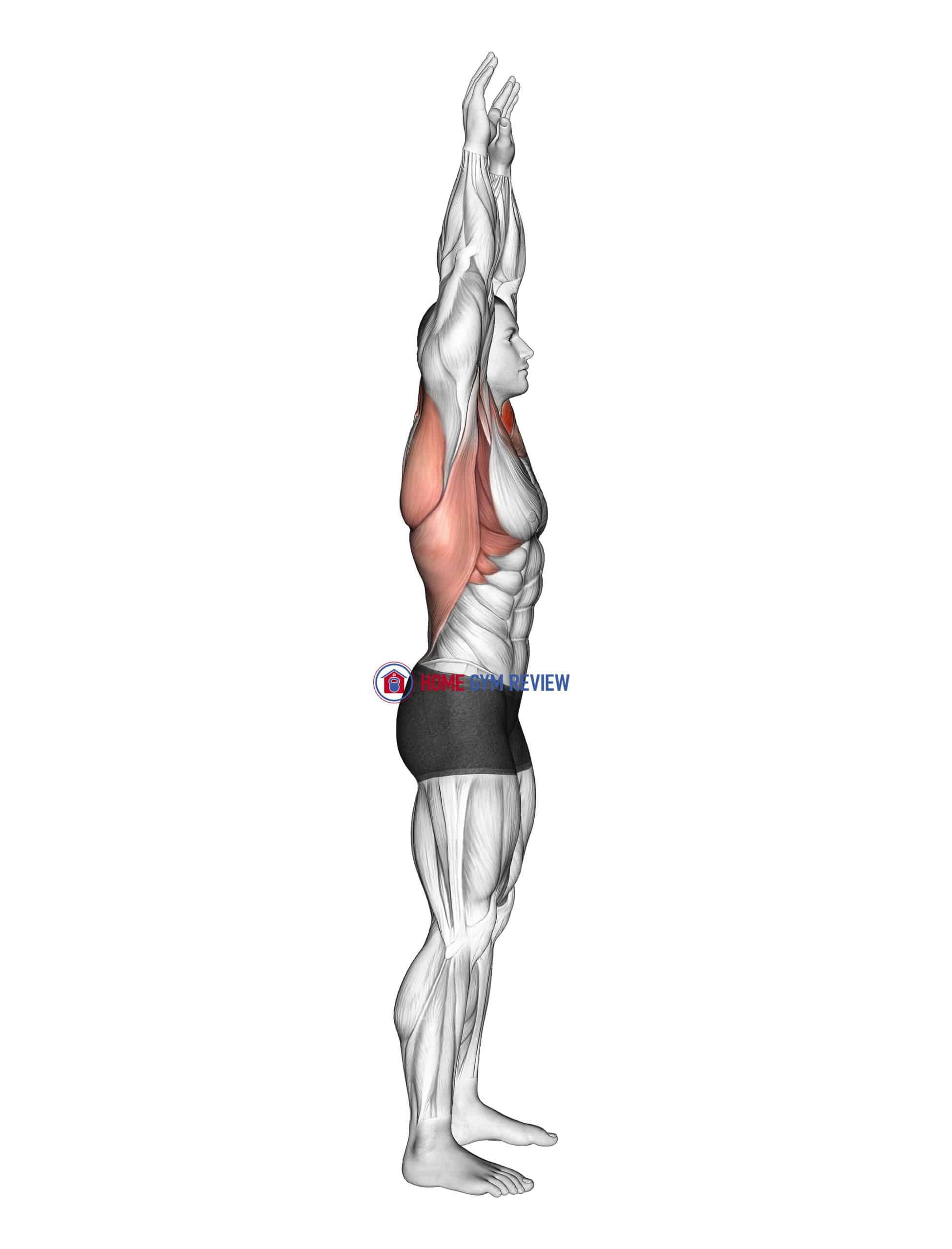 Shoulder Backbend Stretch