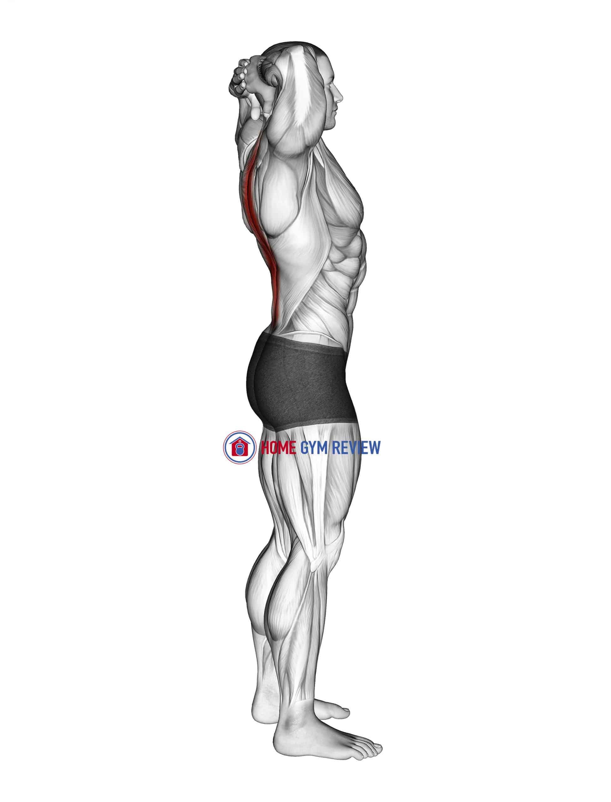 Spine Backbend Stretch