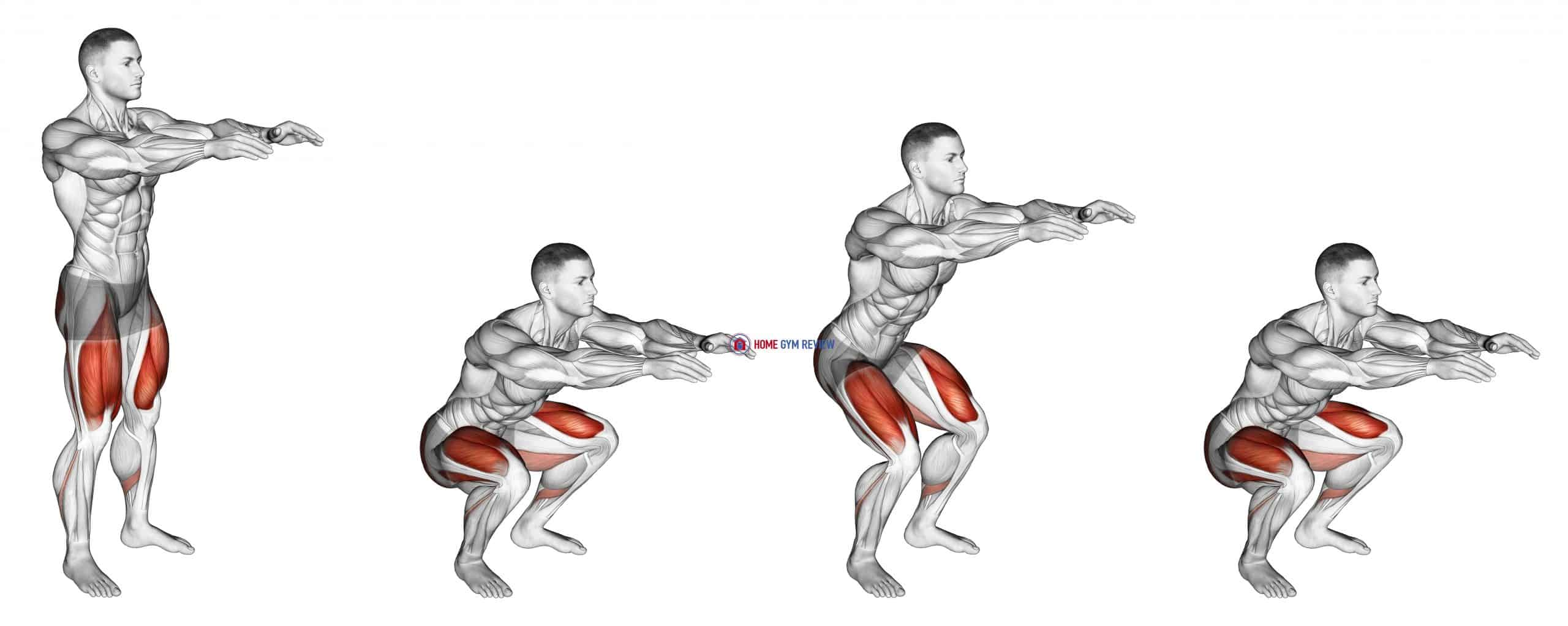 Bodyweight Pulse Squat