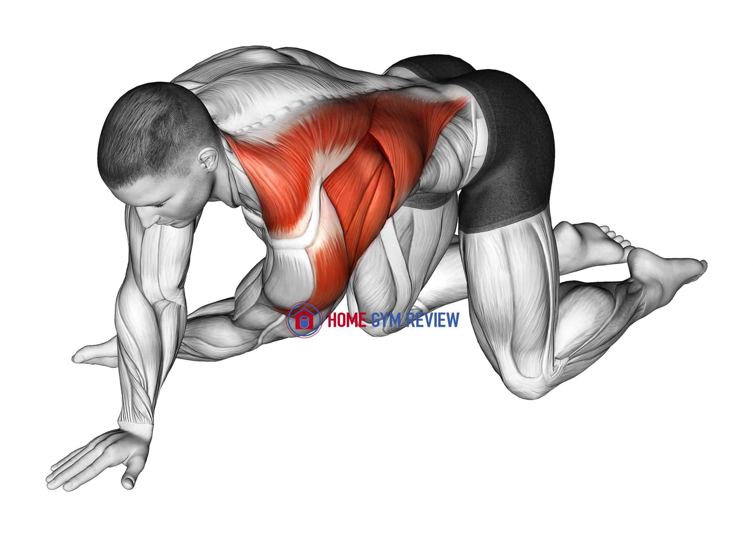 Kneeling T-Spine Mobility Stretching
