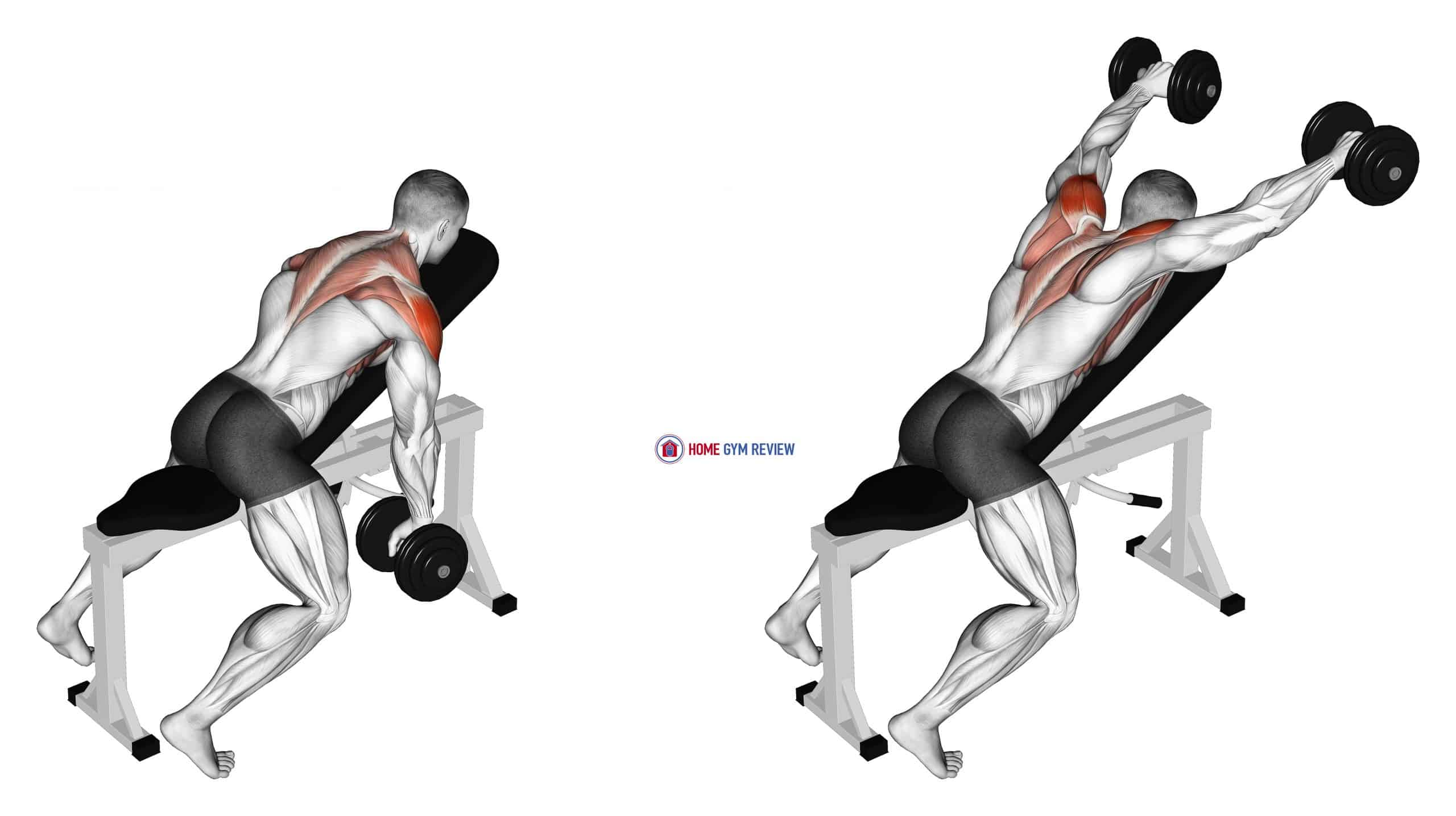 Dumbbell Incline Y-Raise