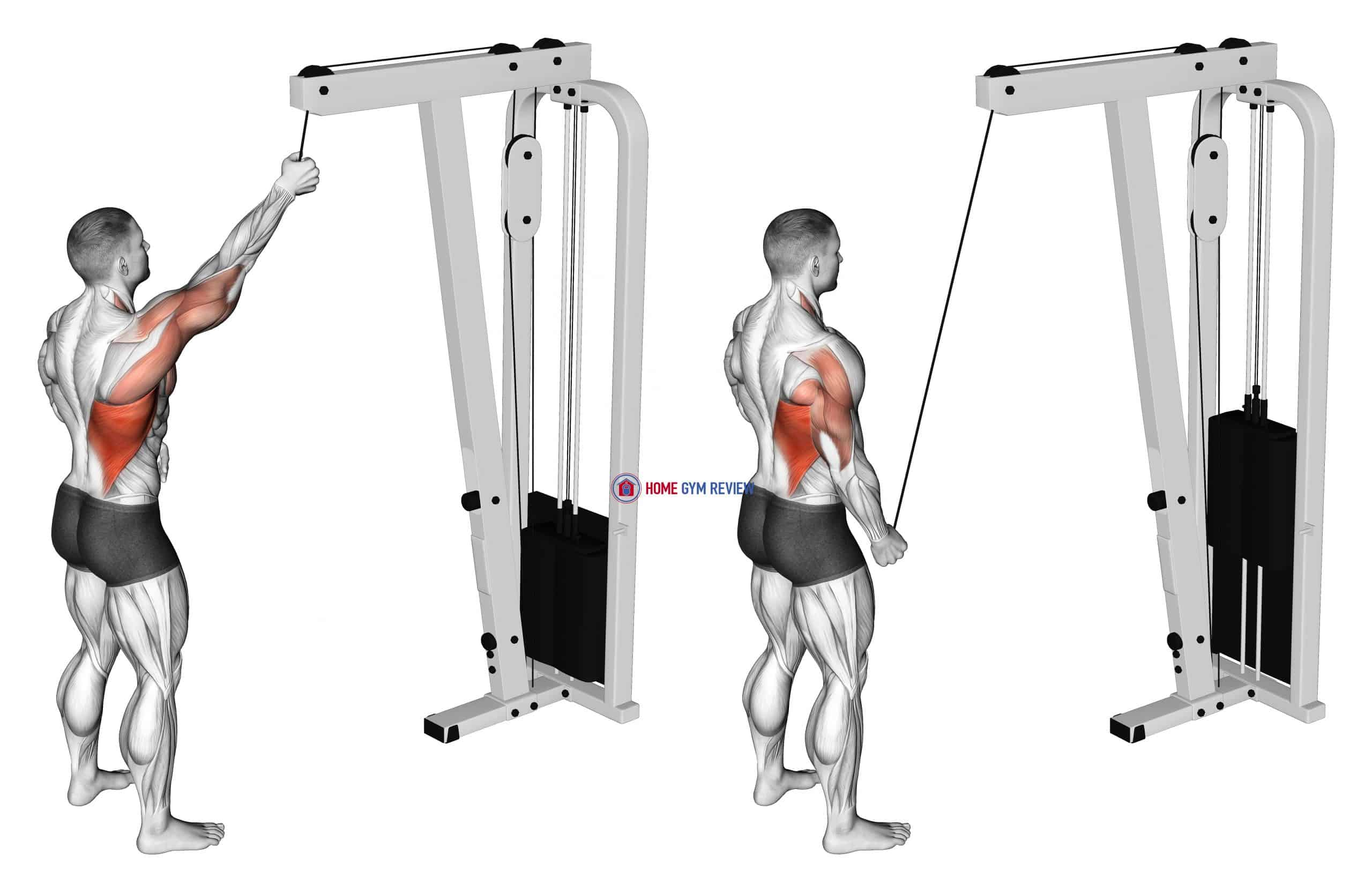 Cable One Arm Pulldown