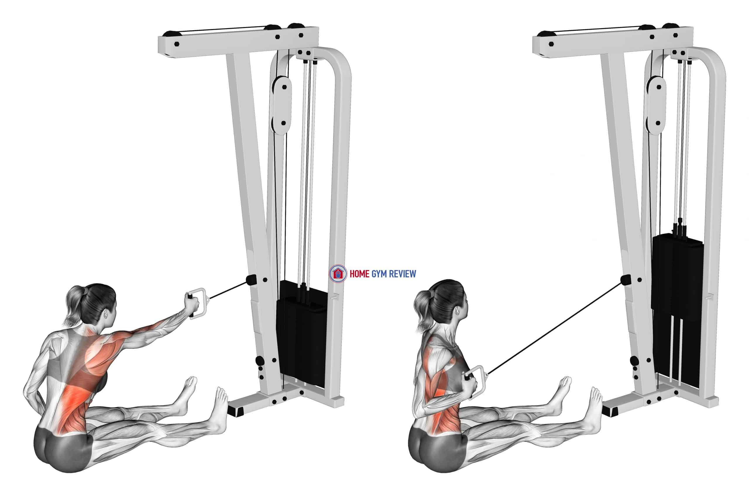 Cable One Arm Twisting Seated Row (female)