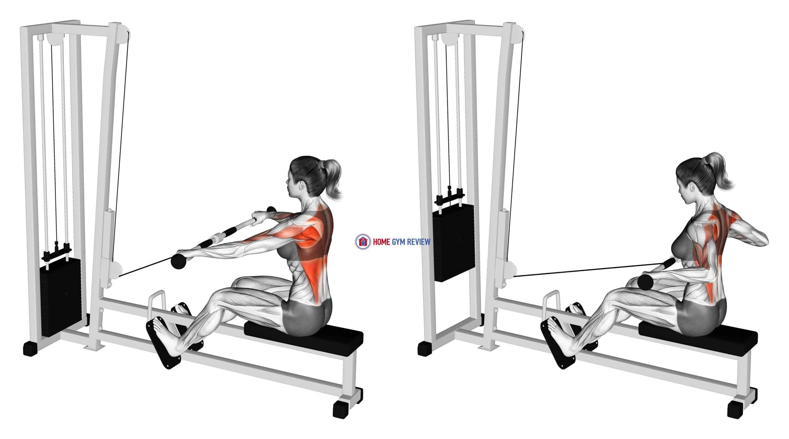 Cable Seated Wide grip Row (female)