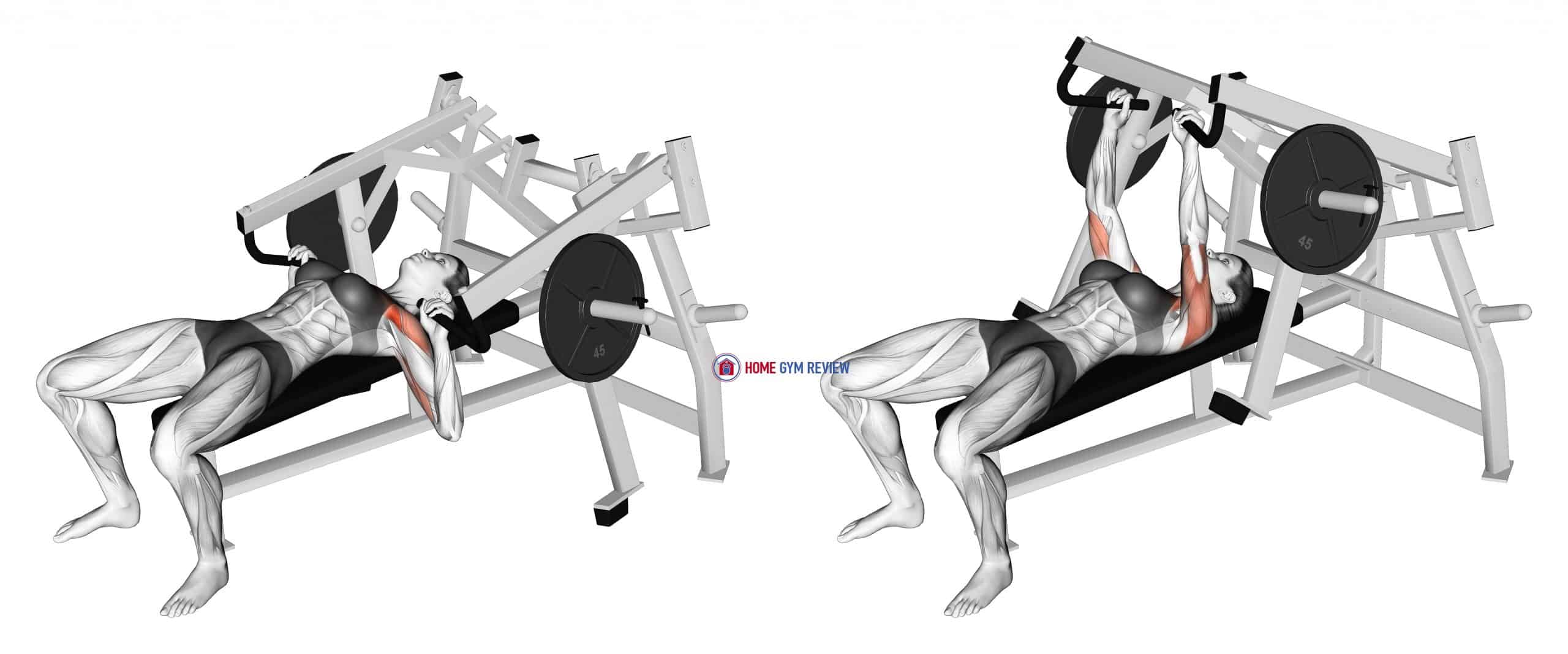 Lever Lying Chest Press (plate loaded) (female)