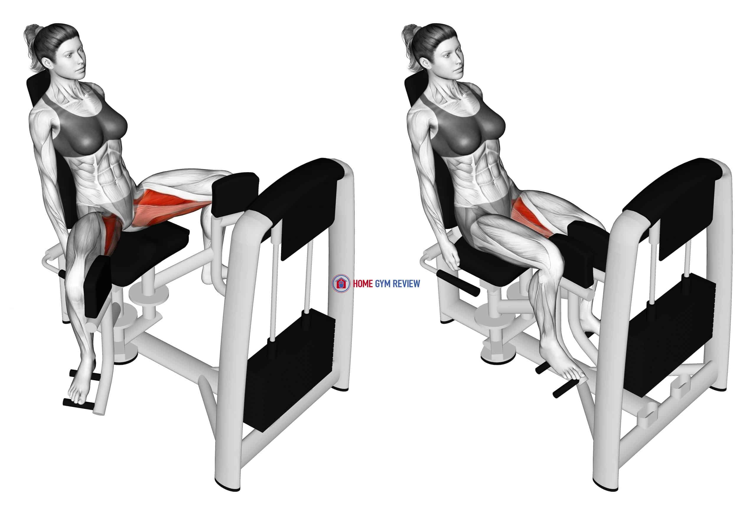 Lever Seated Hip Adduction (female)