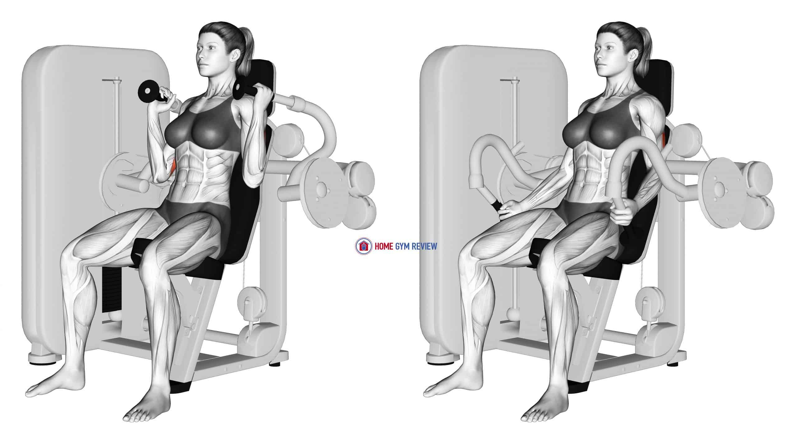 Lever Triceps Extension (female)