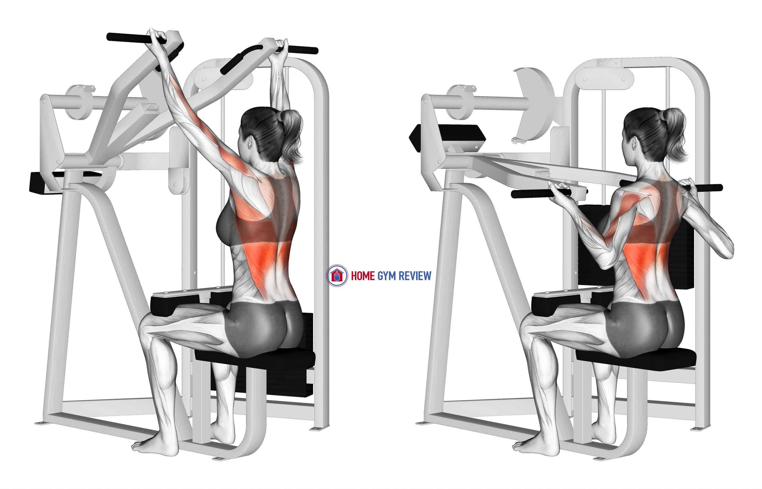 Reverse Grip Machine Lat Pulldown (female)