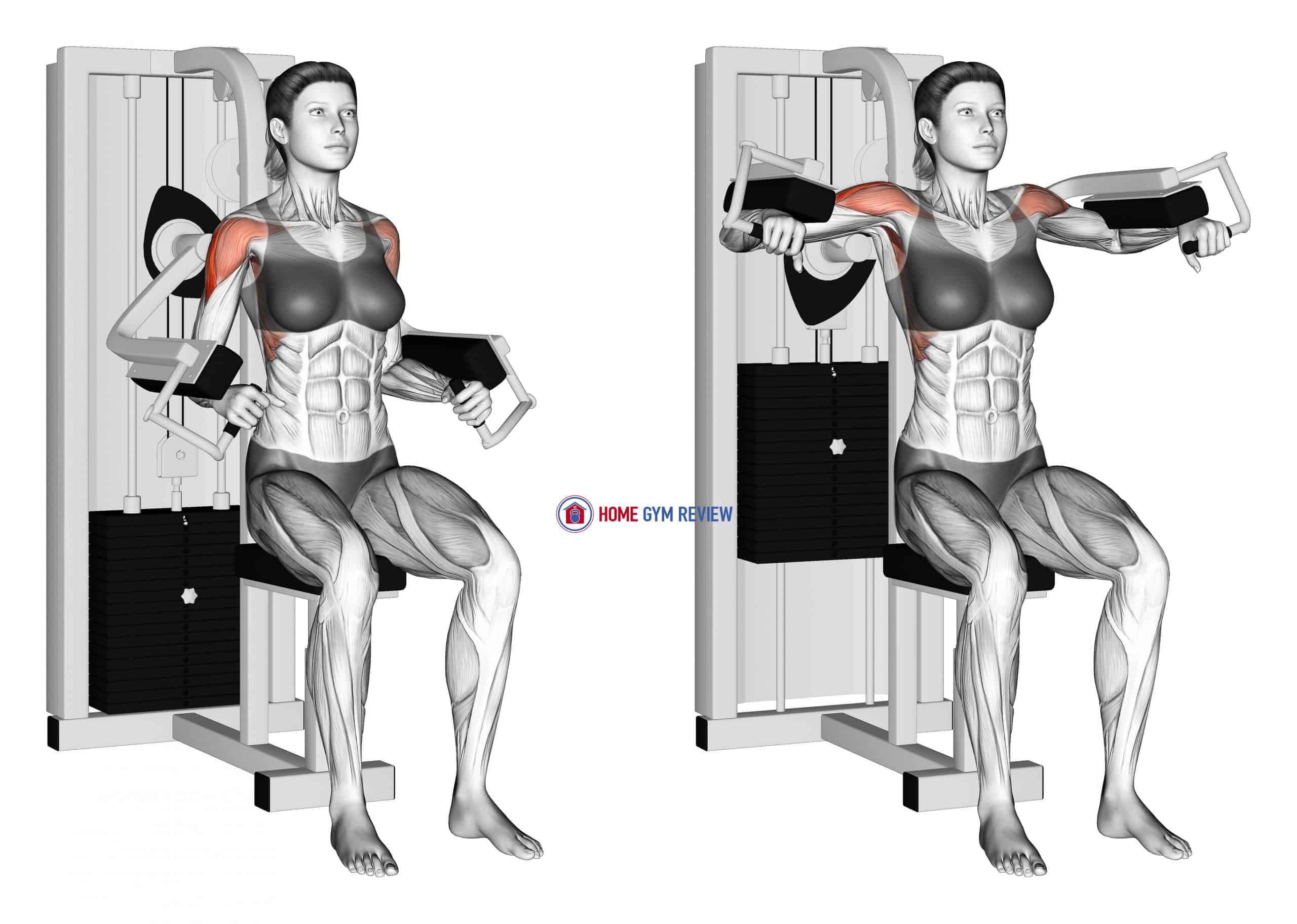 Lever Lateral Raise (female)