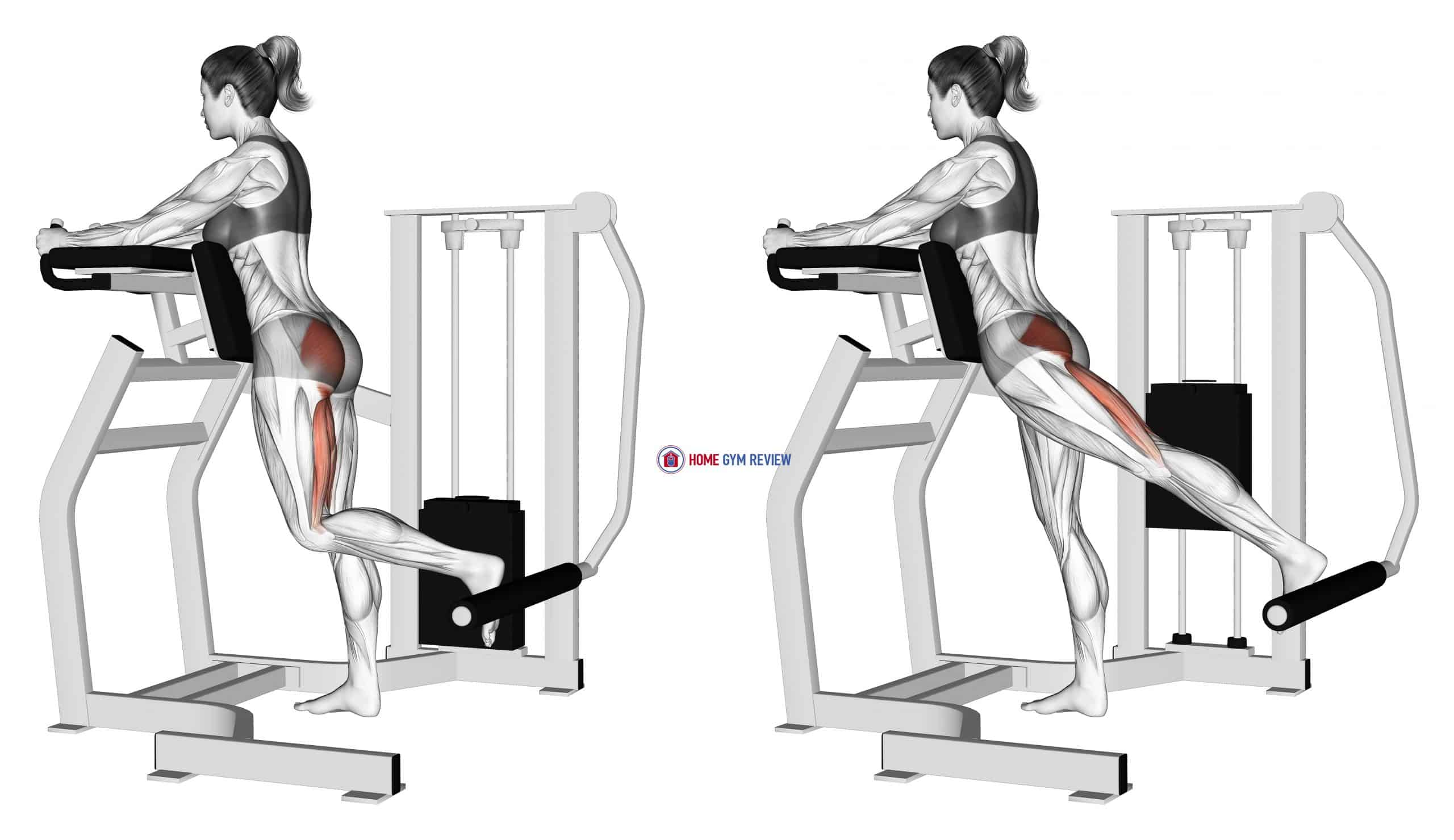 Lever Standing Hip Extension (female)