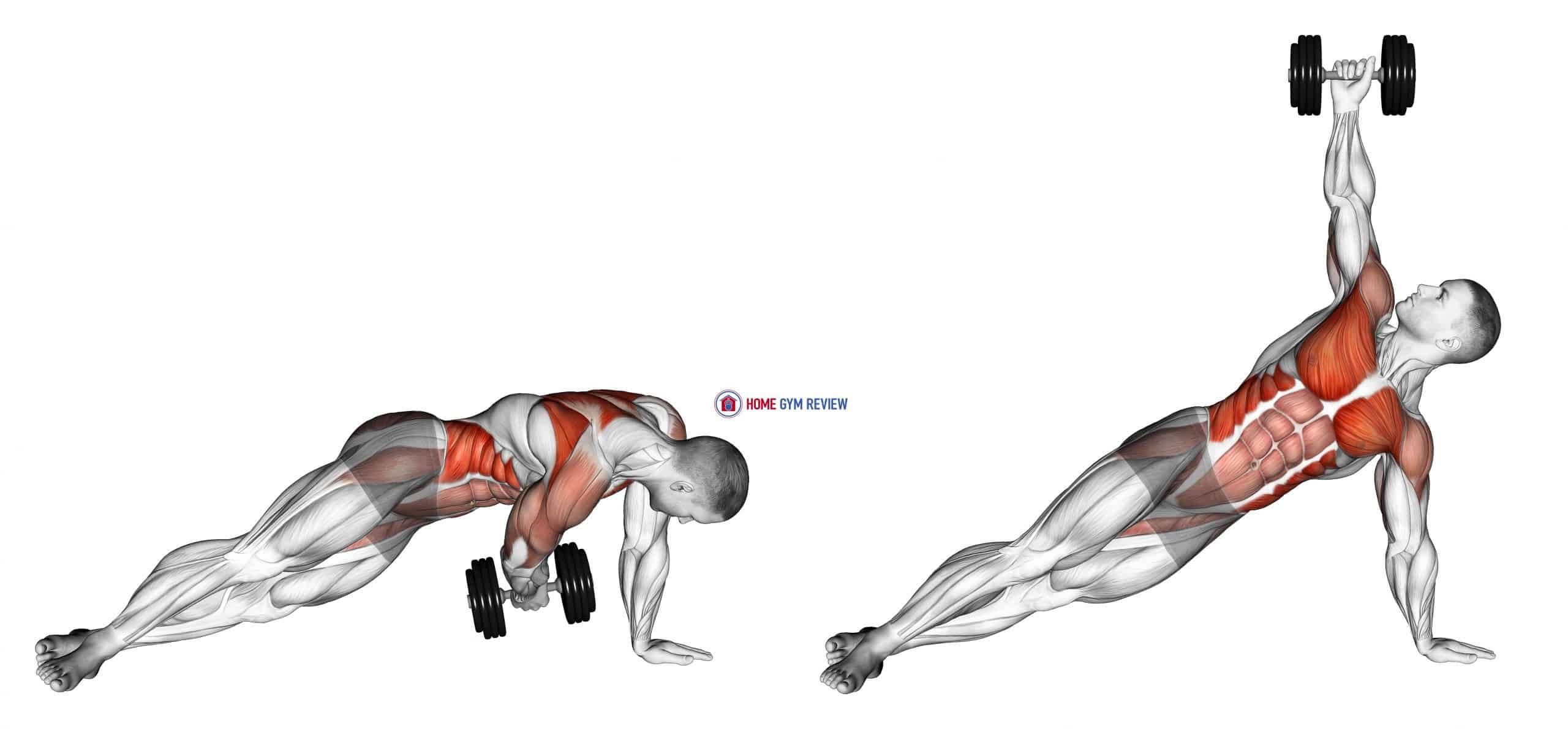 Dumbbell Side Plank with Rear Fly
