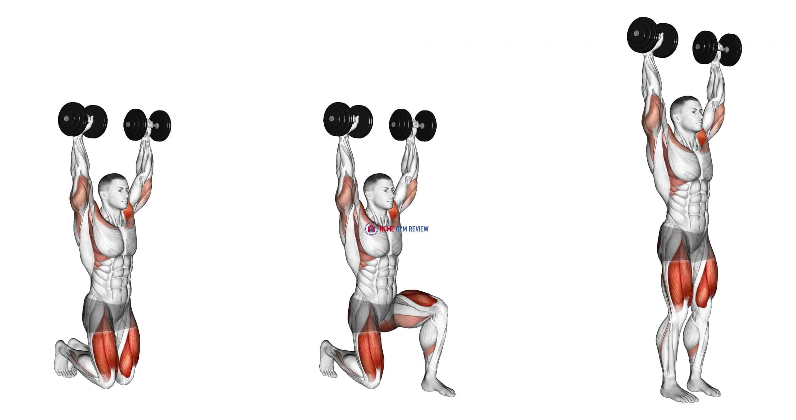 Dumbbell Kneeling Hold to Stand
