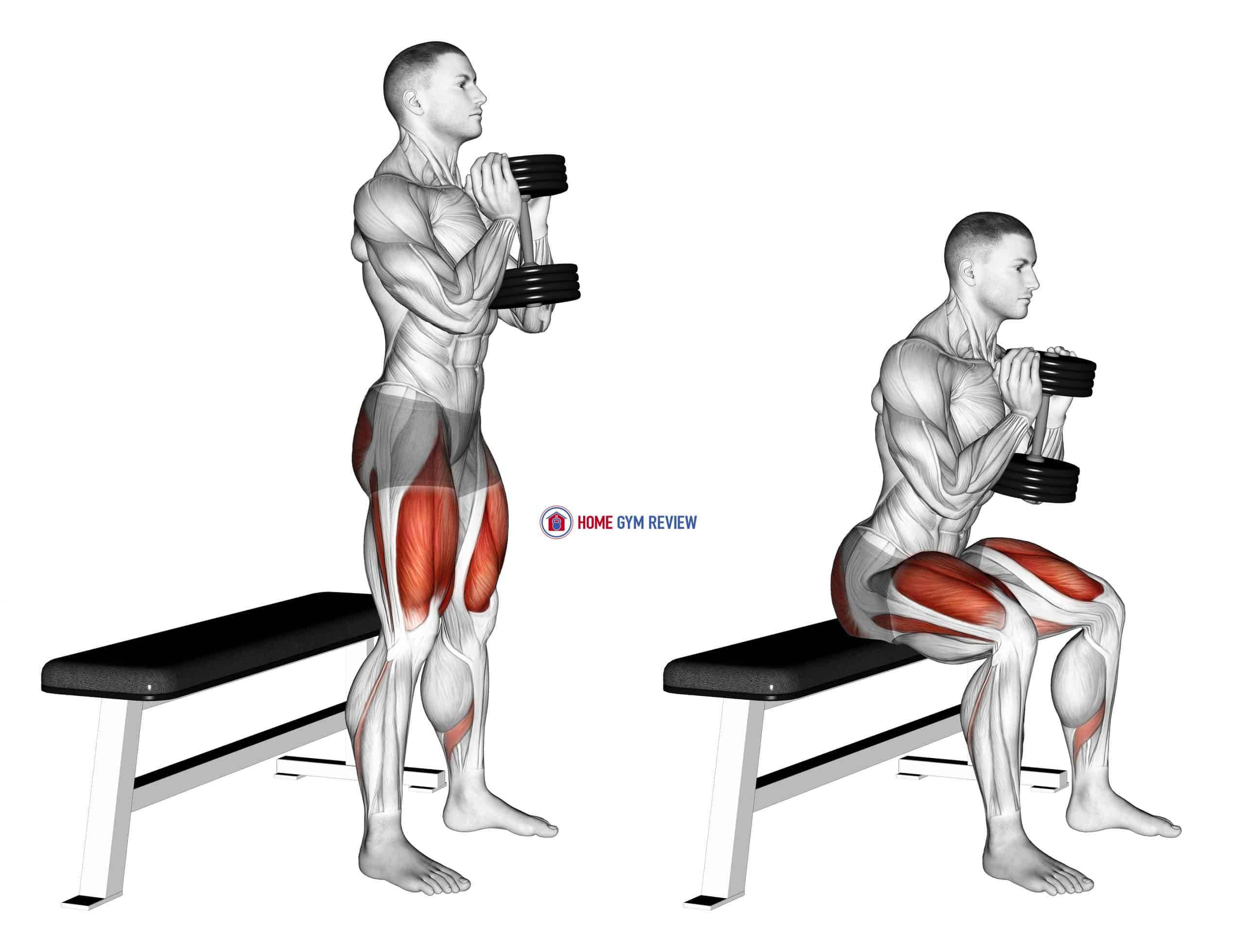 Dumbbell Goblet Box Squat