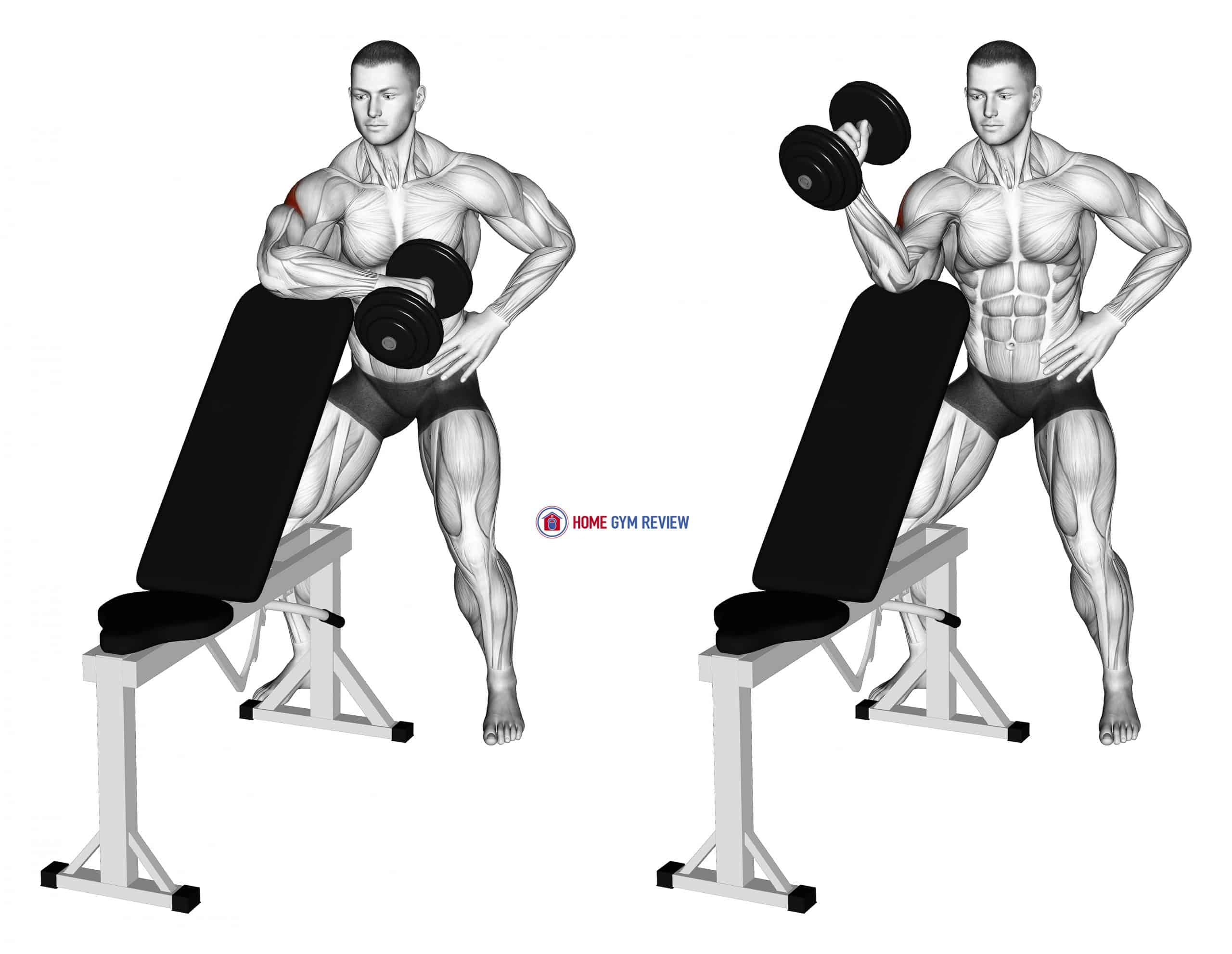 Dumbbell Bench Supported External Rotation