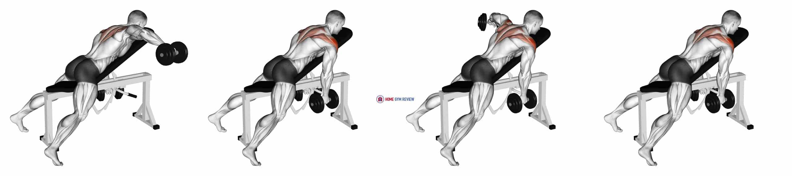 Dumbbell Incline Alternate Reverse Fly