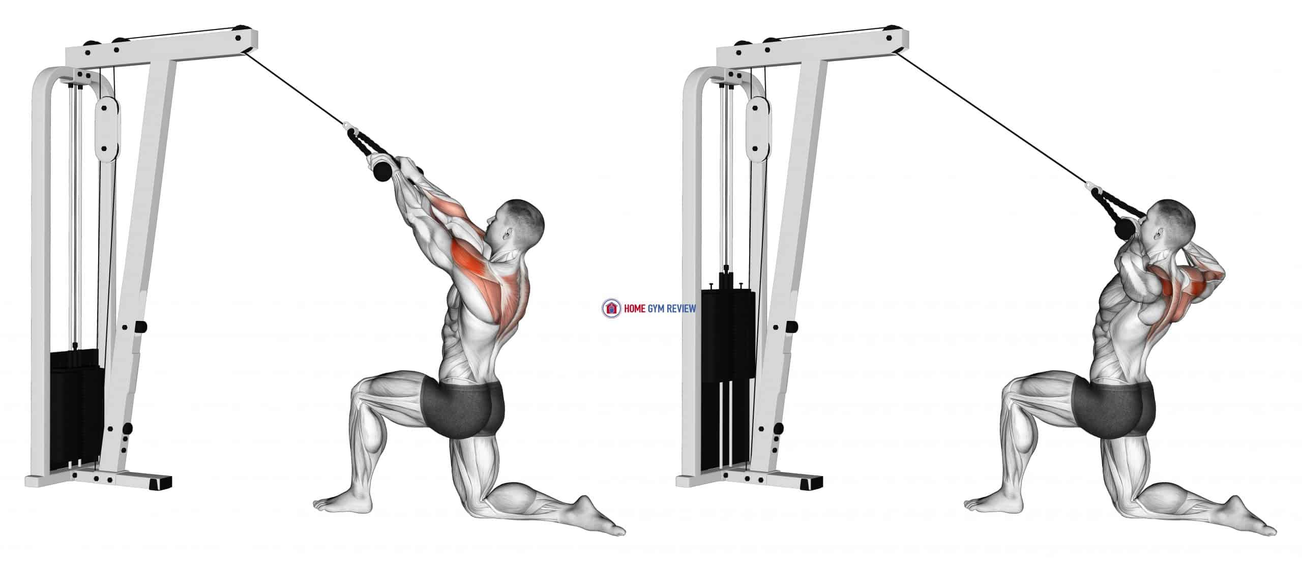 Cable Kneeling Rear Delt Row (with rope) (male)