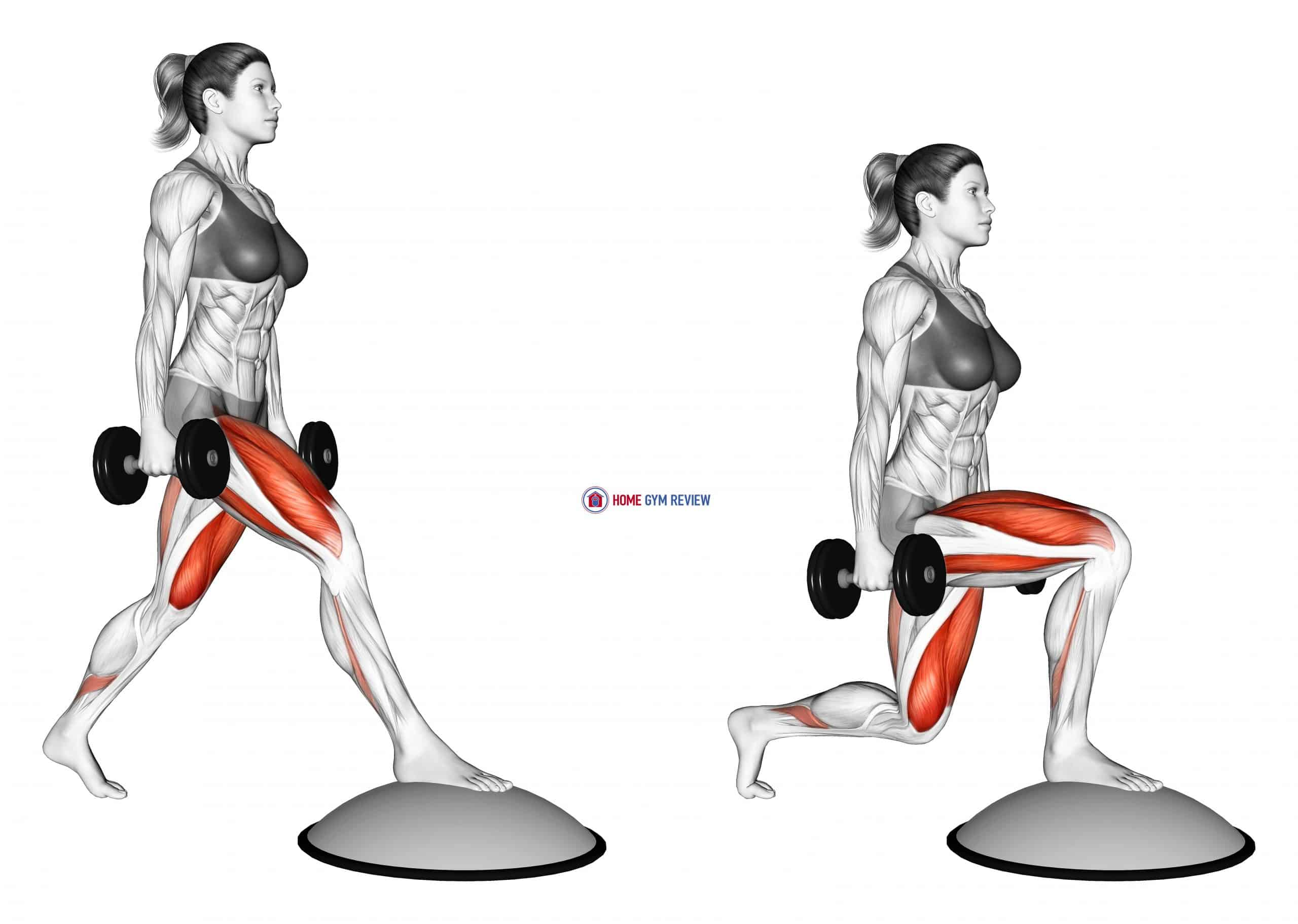 Dumbbell Split Squat Front Foot Elevanted with Bosu Ball (female)