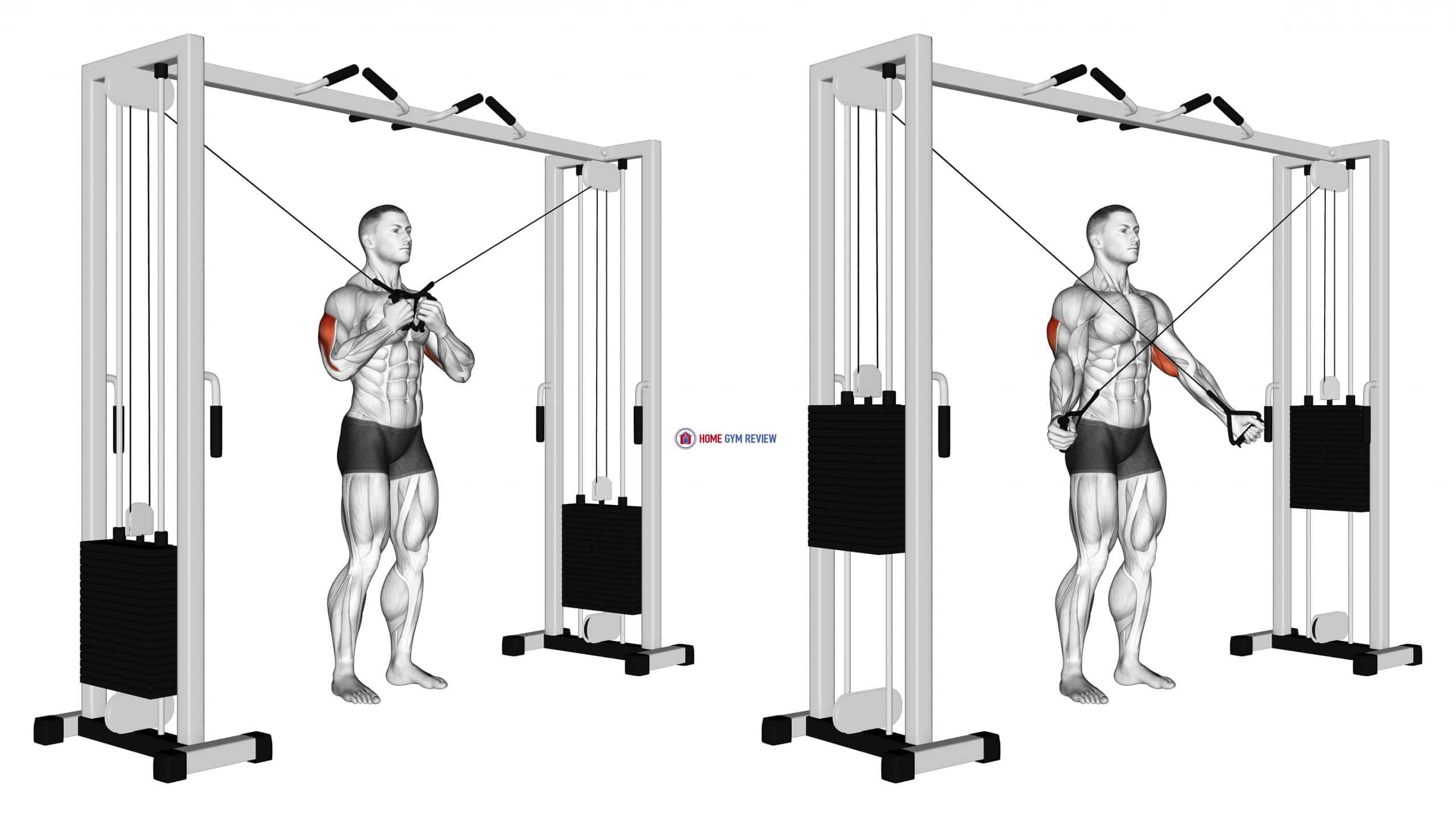 Cable Standing High Cross Triceps Extension