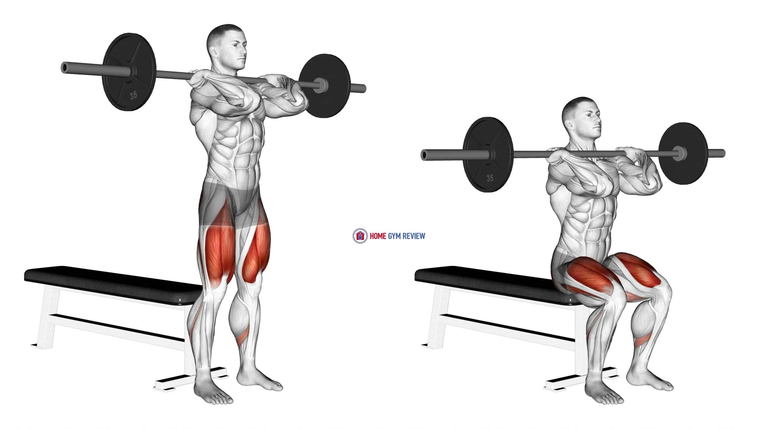 Barbell Front Bench Squat