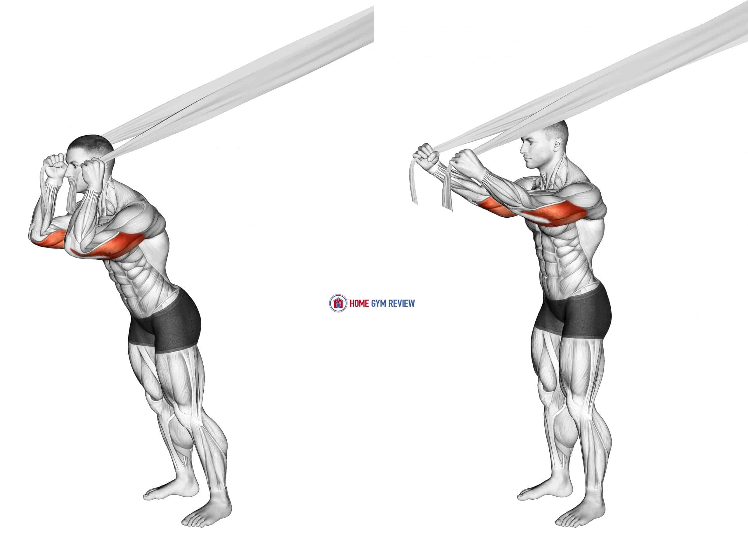Overhead Triceps Extension with Bed Sheet