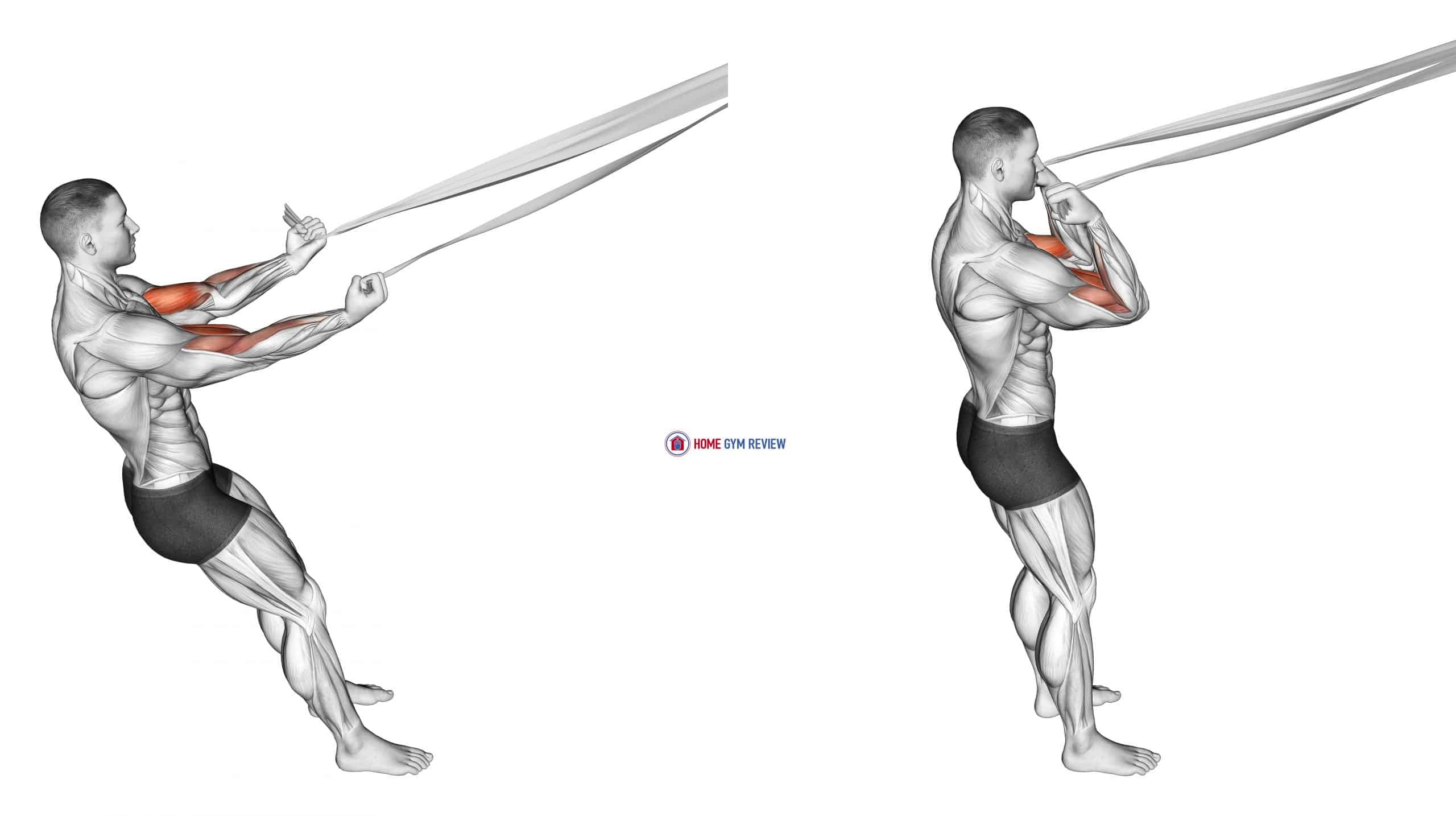 Biceps Curl with Bed Sheet