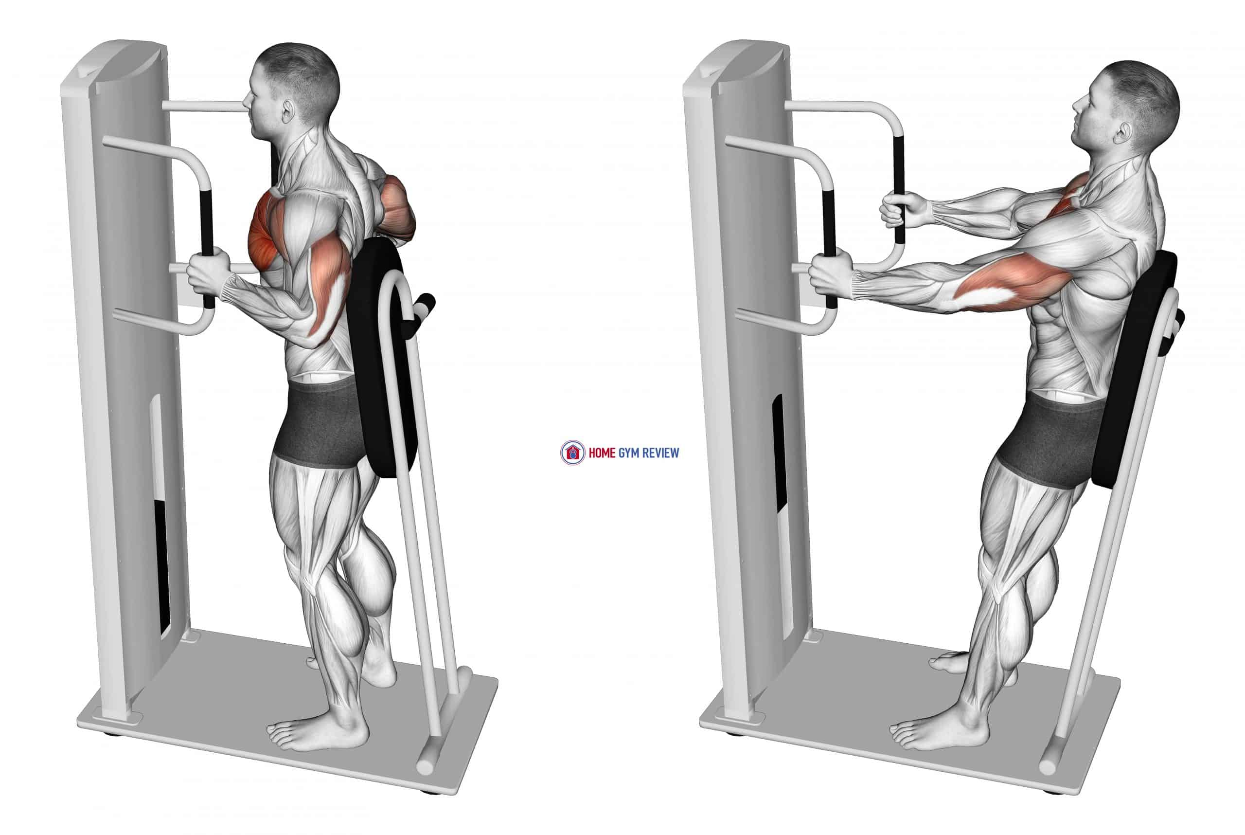 Lever Standing Chest Press