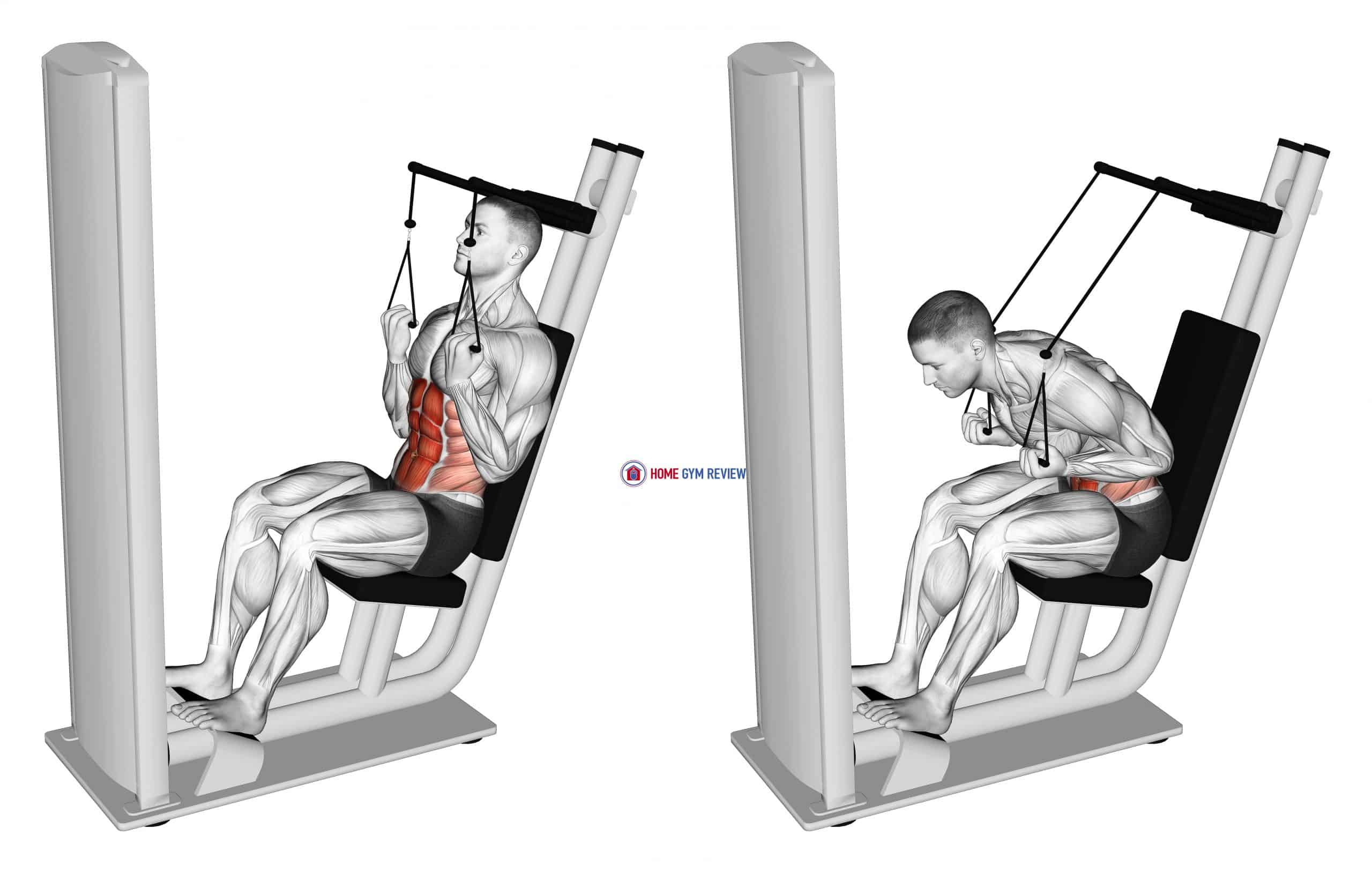 Lever Seated Crunch (VERSION 2)