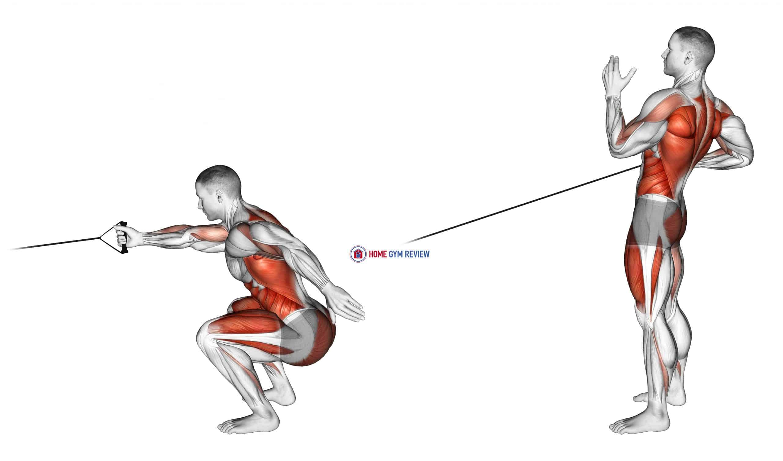 Band Squat with Single Arm Row