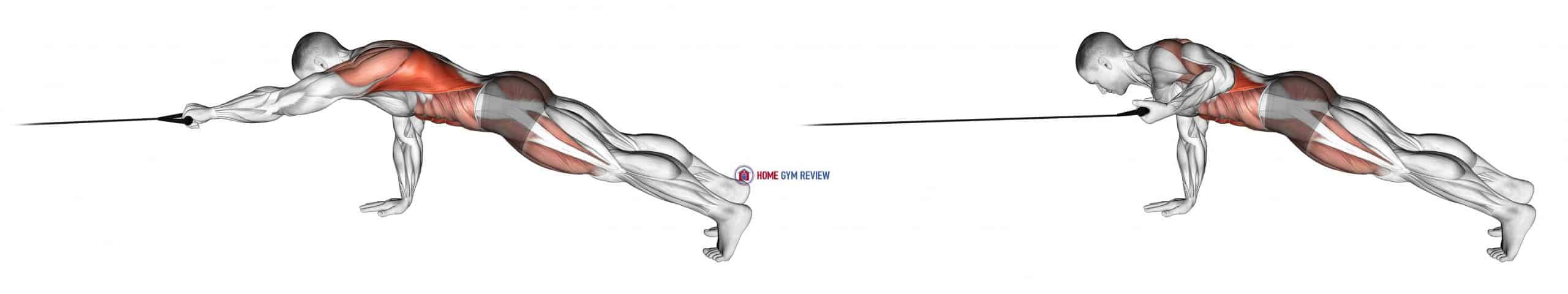 Band Front Plank with Single Arm Pulldown