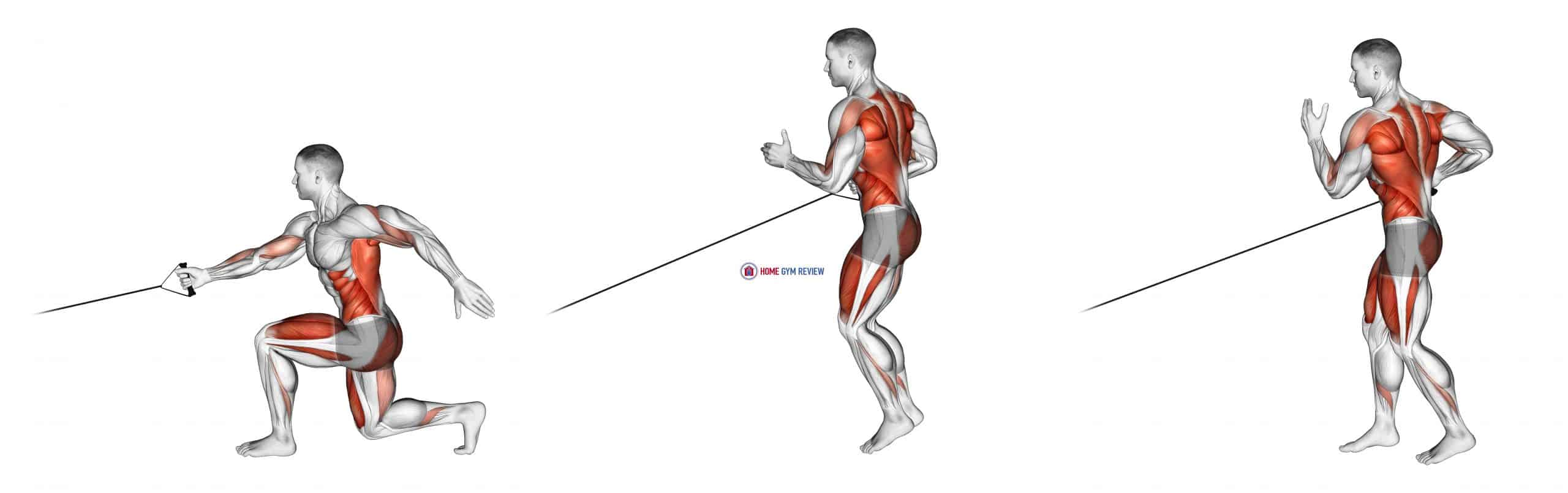 Band Jump Lunge with Single Arm Row