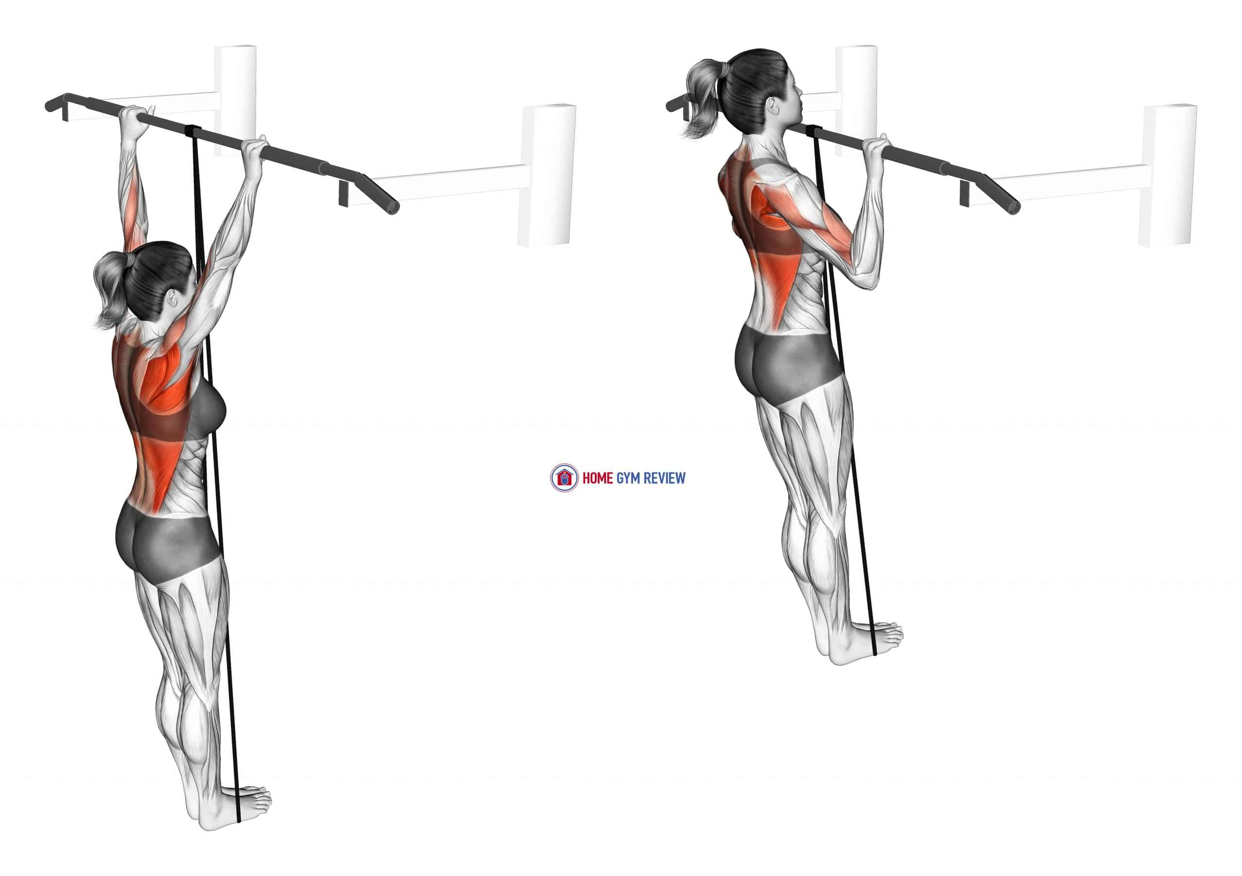 Band Assisted Pull Up (VERSION 3) (female)