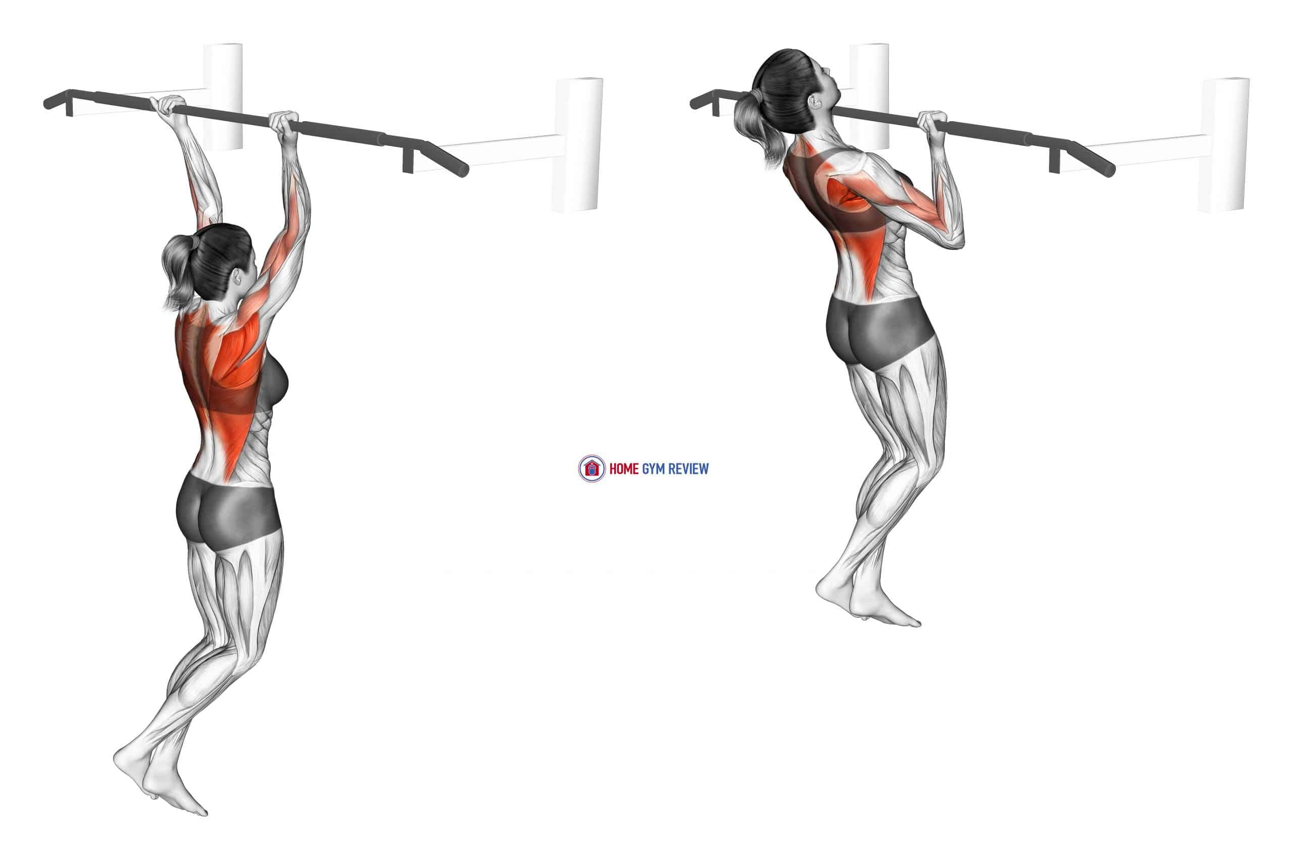 Reverse grip Pull-up (female)