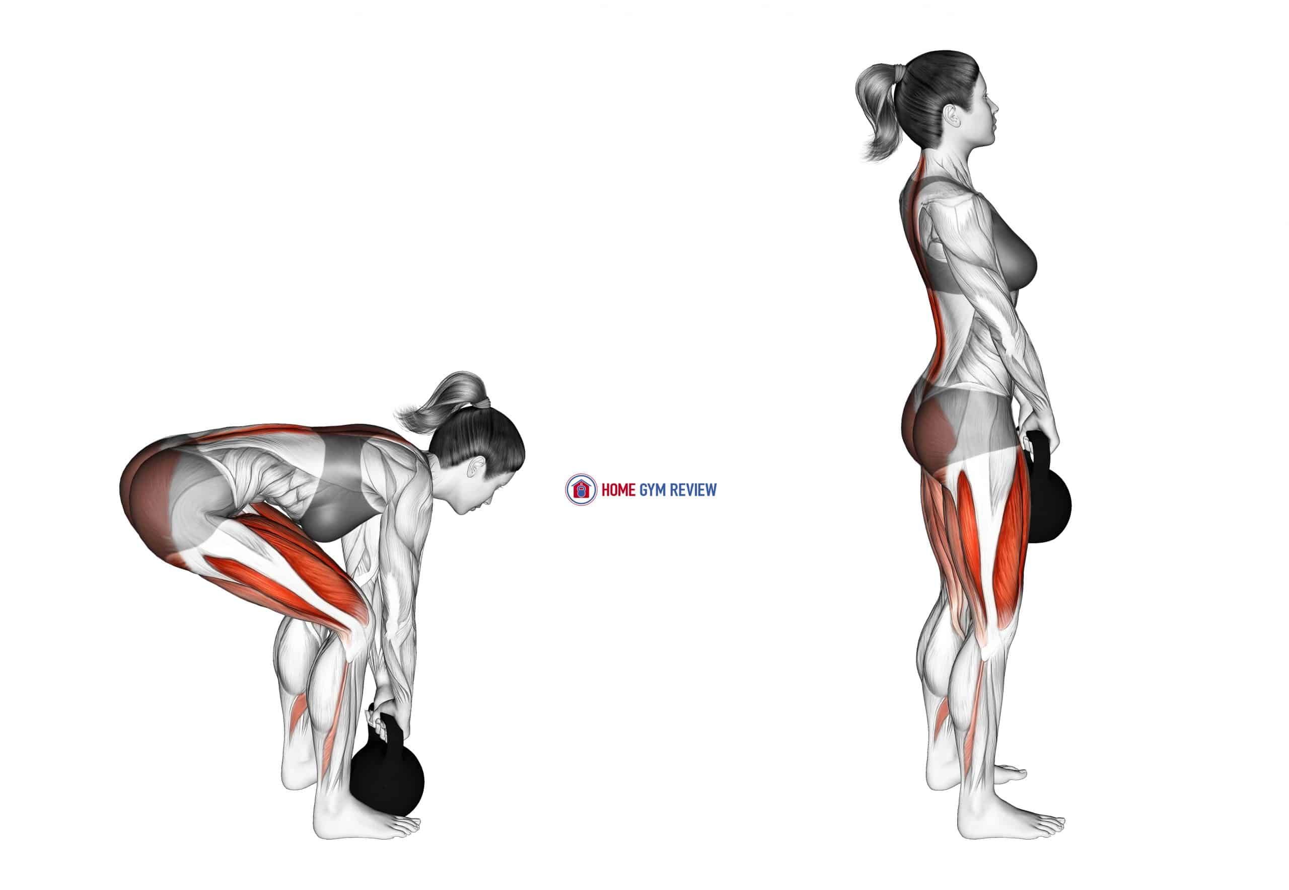Kettlebell Deadlift (female)