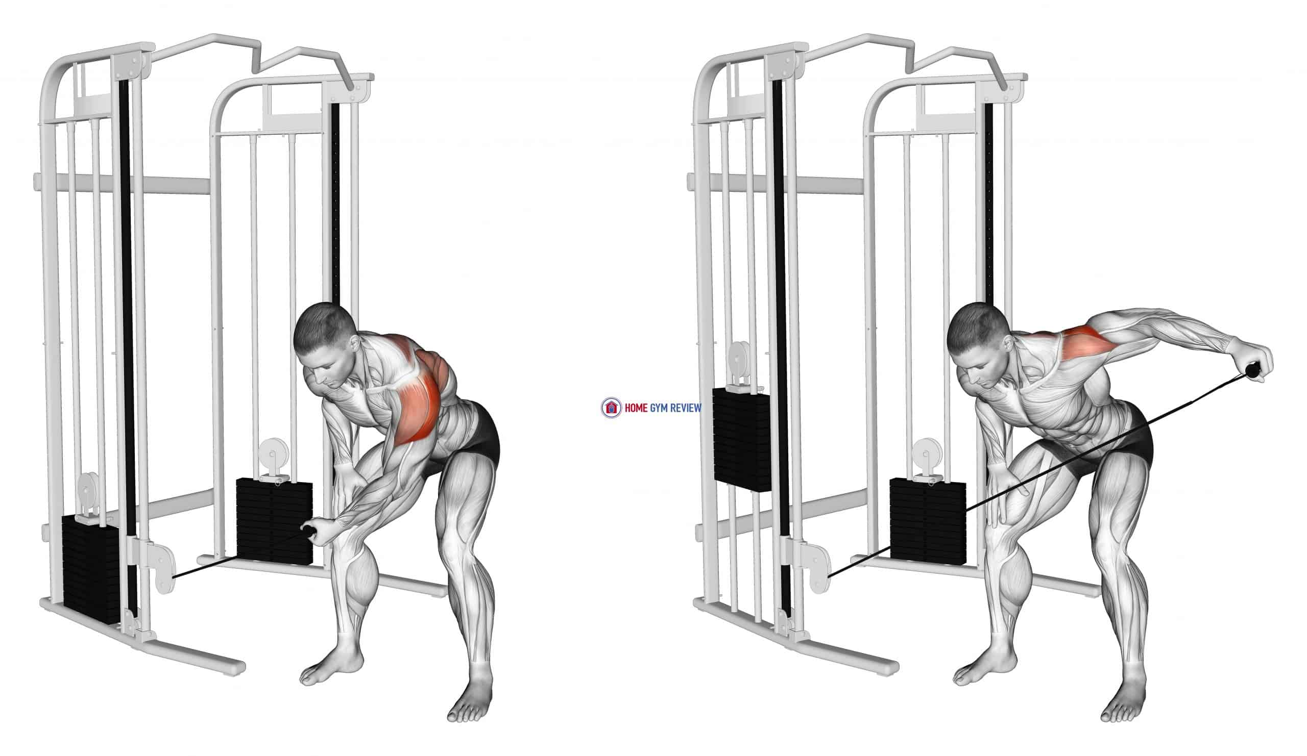 Cable Bent-Over One Arm Lateral Raise
