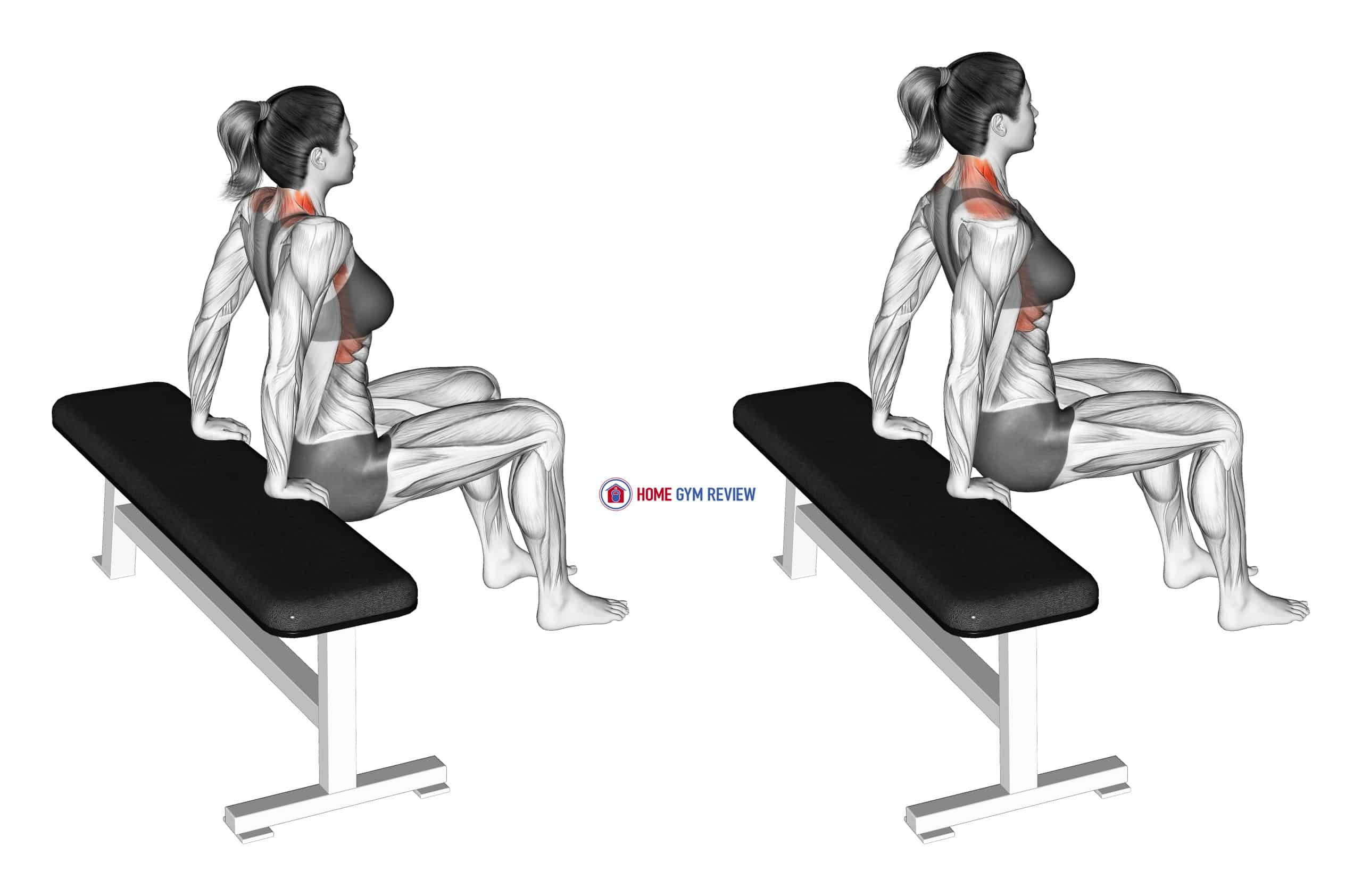 Scapula Dips (female)