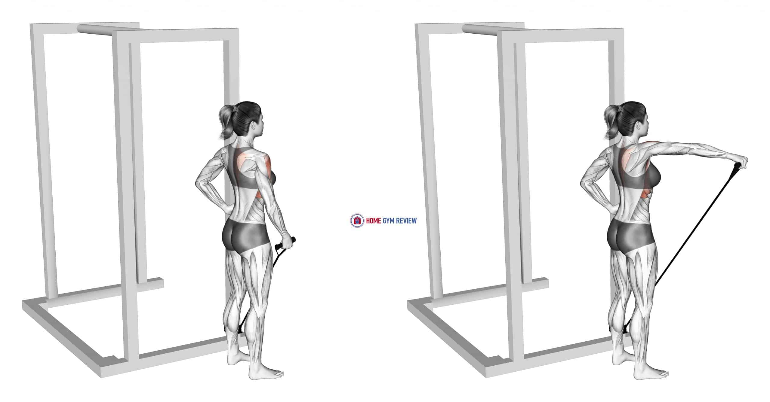 Band front lateral raise (female)